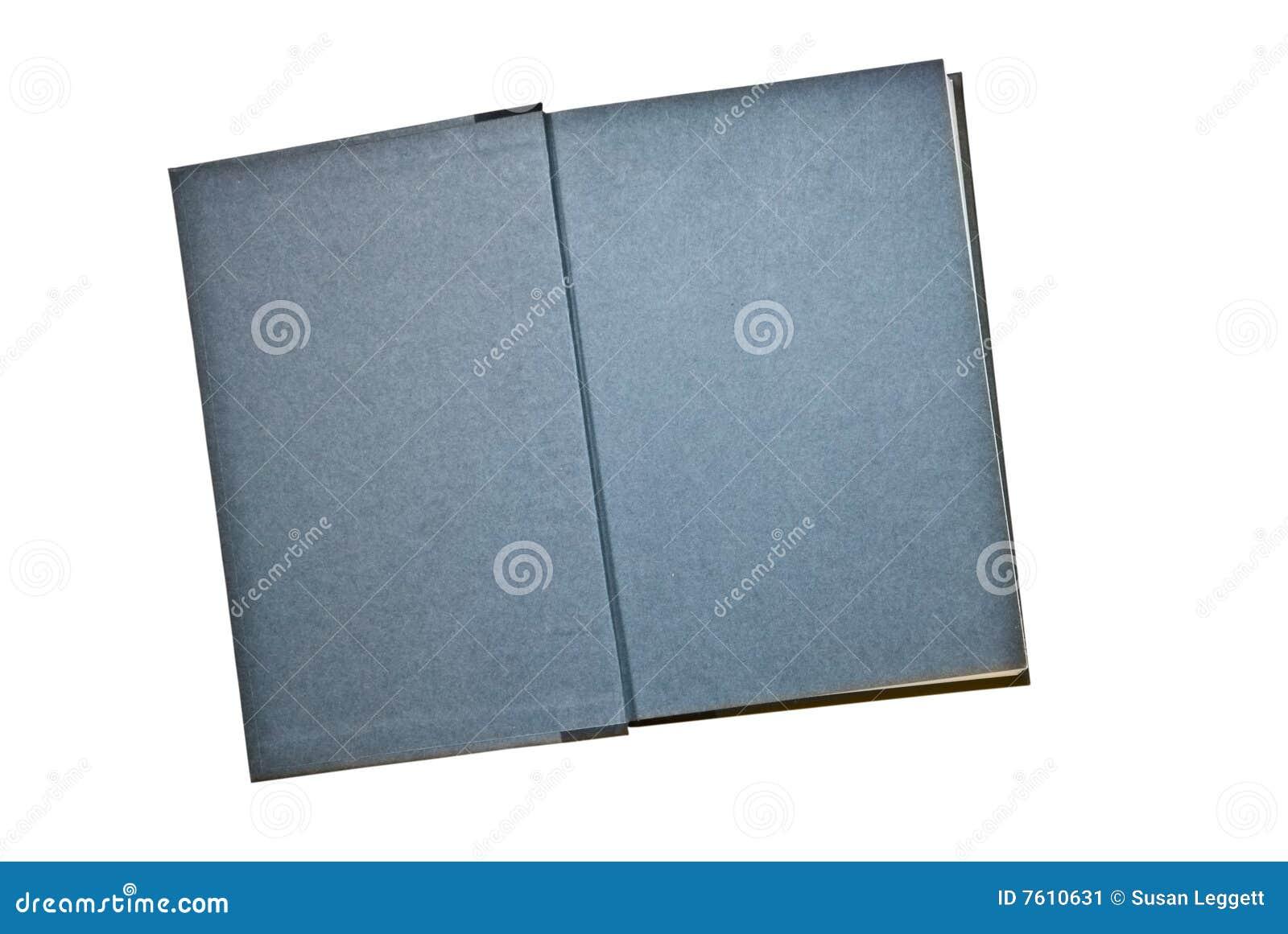 蓝皮书灰色页