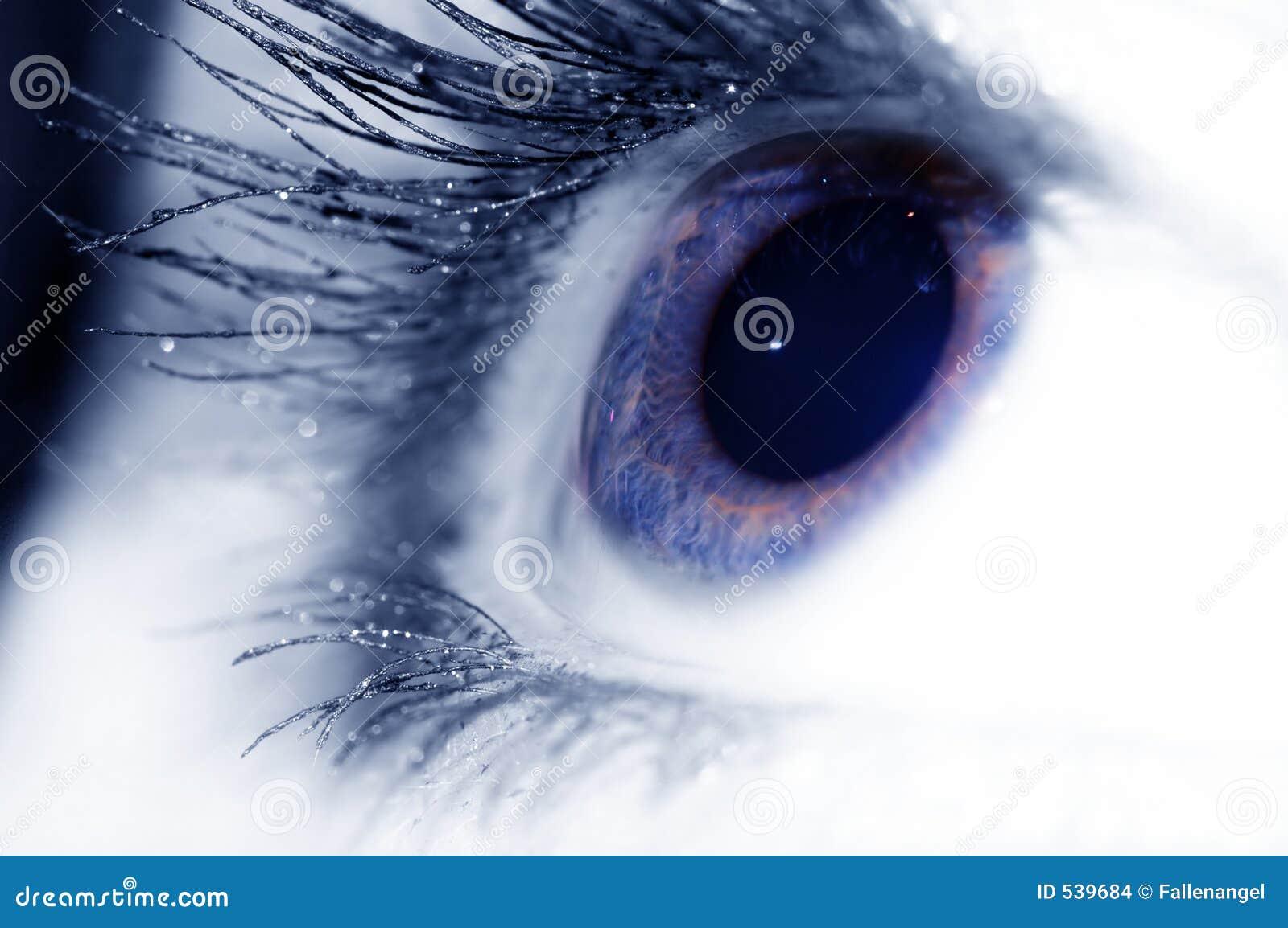 Download 蓝眼睛 库存照片. 图片 包括有 人力, 强光, 眼珠, 扫视, 沟通, 魅力, 构成, 眼皮, 眼睛, 光学 - 539684
