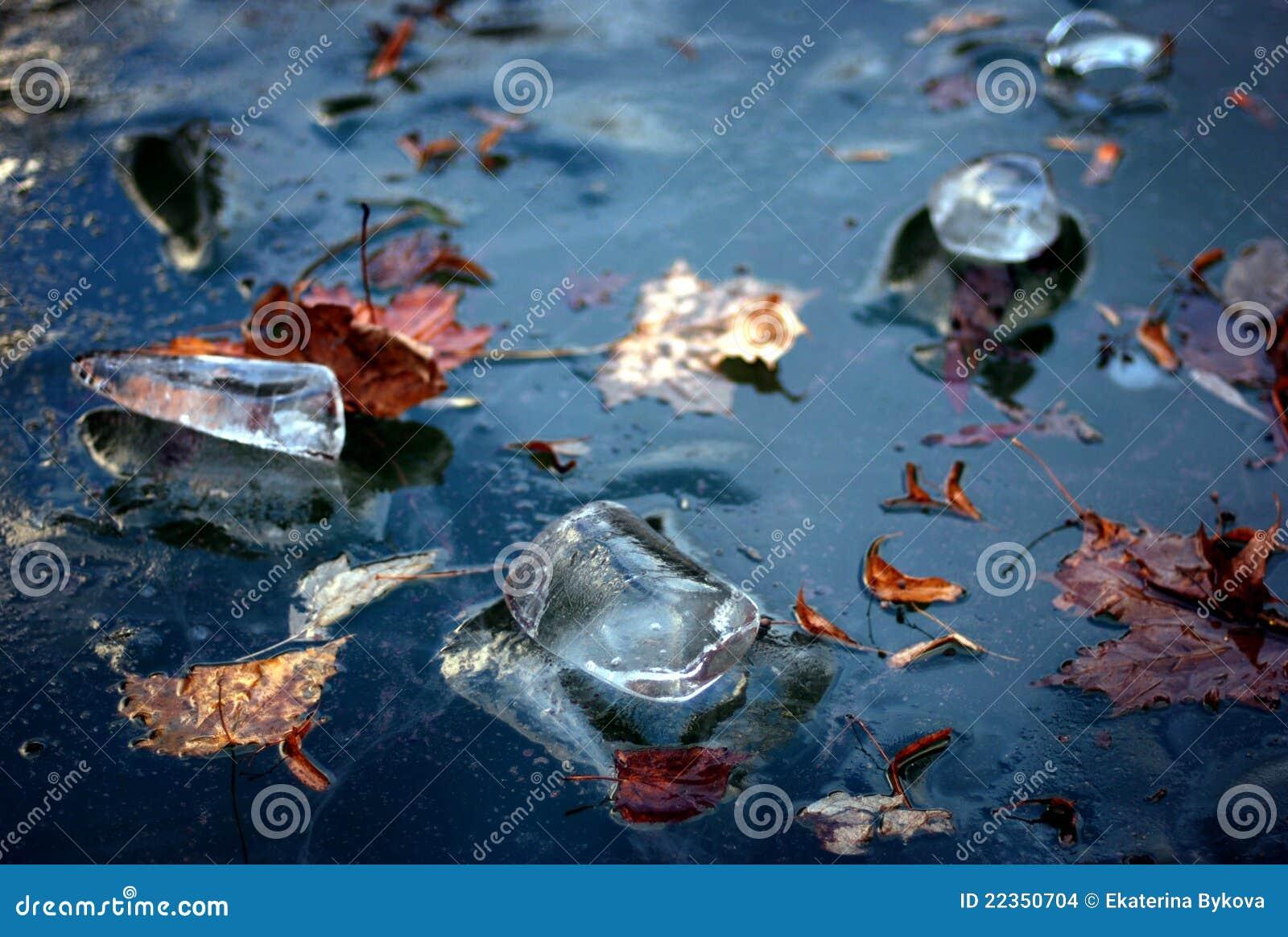 蓝色冻结的冰离开槭树河冬天