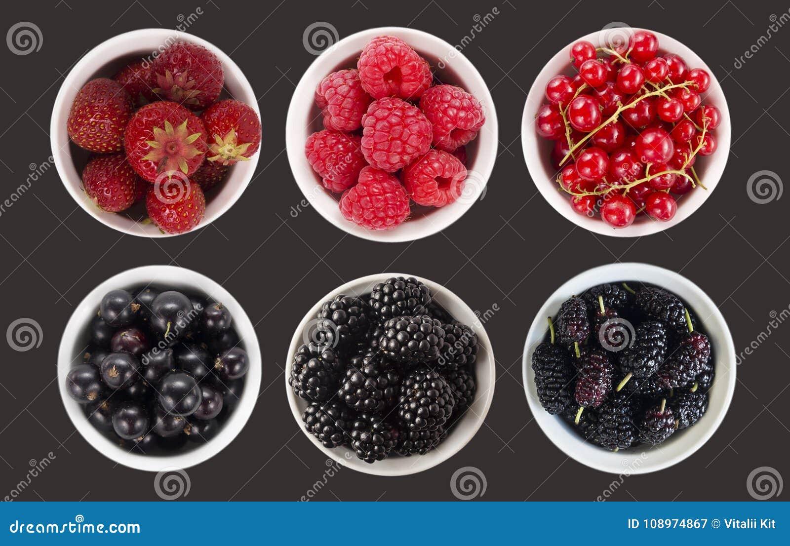 蓝色和红色在黑色隔绝的果子和莓果 与拷贝空间的甜和水多的莓果文本的 顶视图 桑树, blackberr