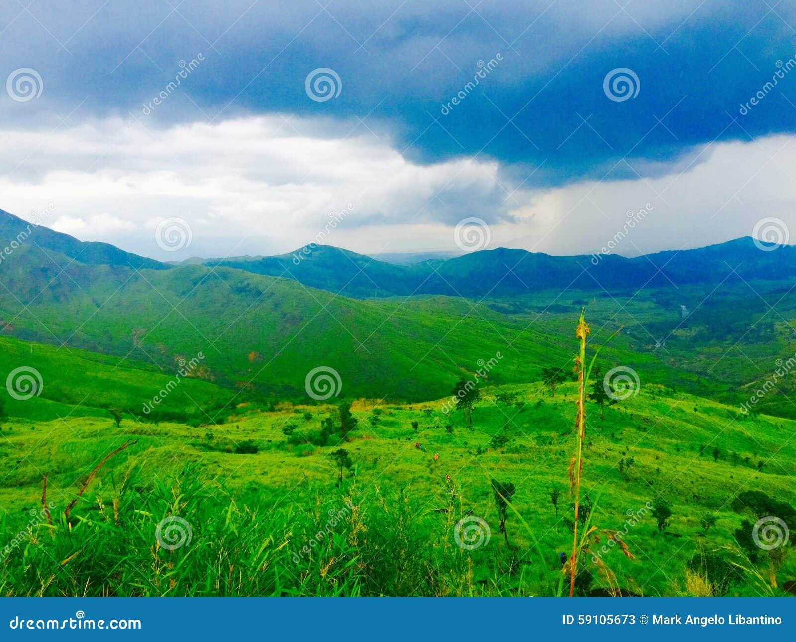 蓝色和绿色山