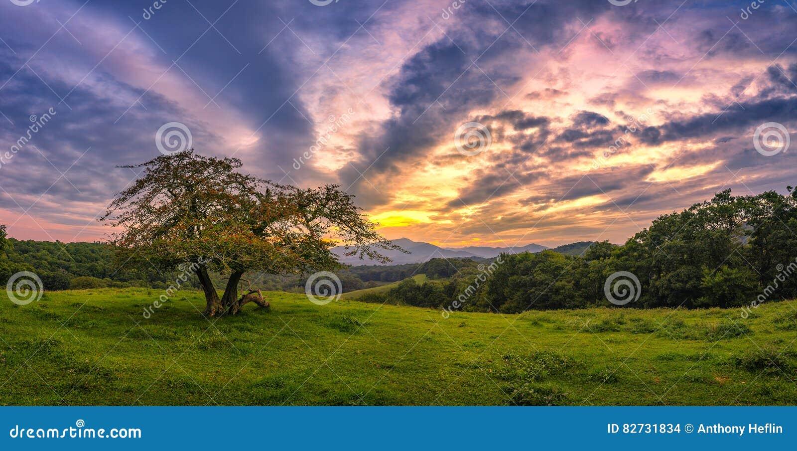 蓝色土坎大路,风景日落