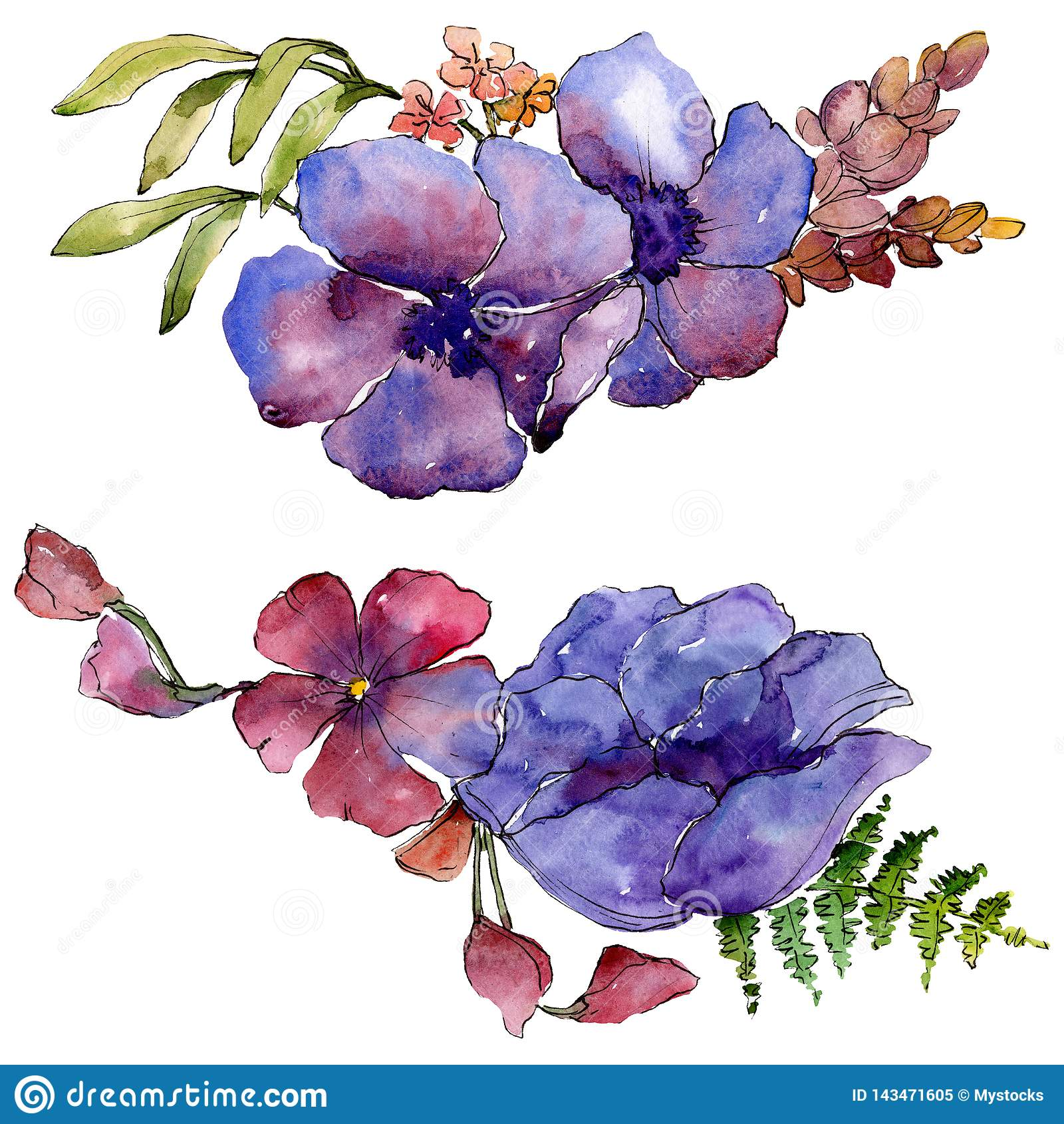 蓝色紫色花束花卉植物的花 背景基础设计集合水彩 被隔绝的花束例证元素