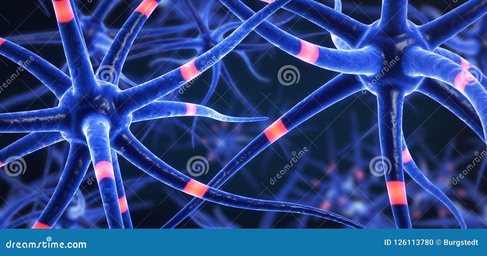 蓝色色的传送的脑细胞
