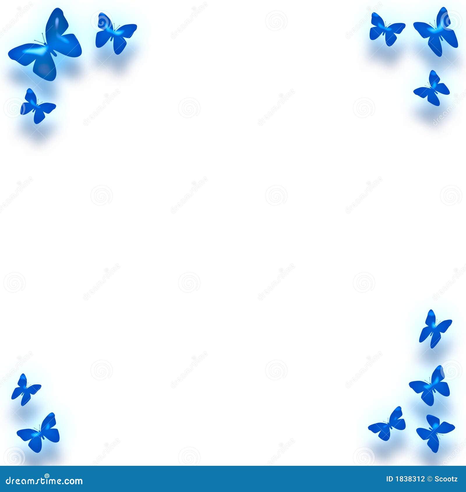 蓝色边界蝴蝶