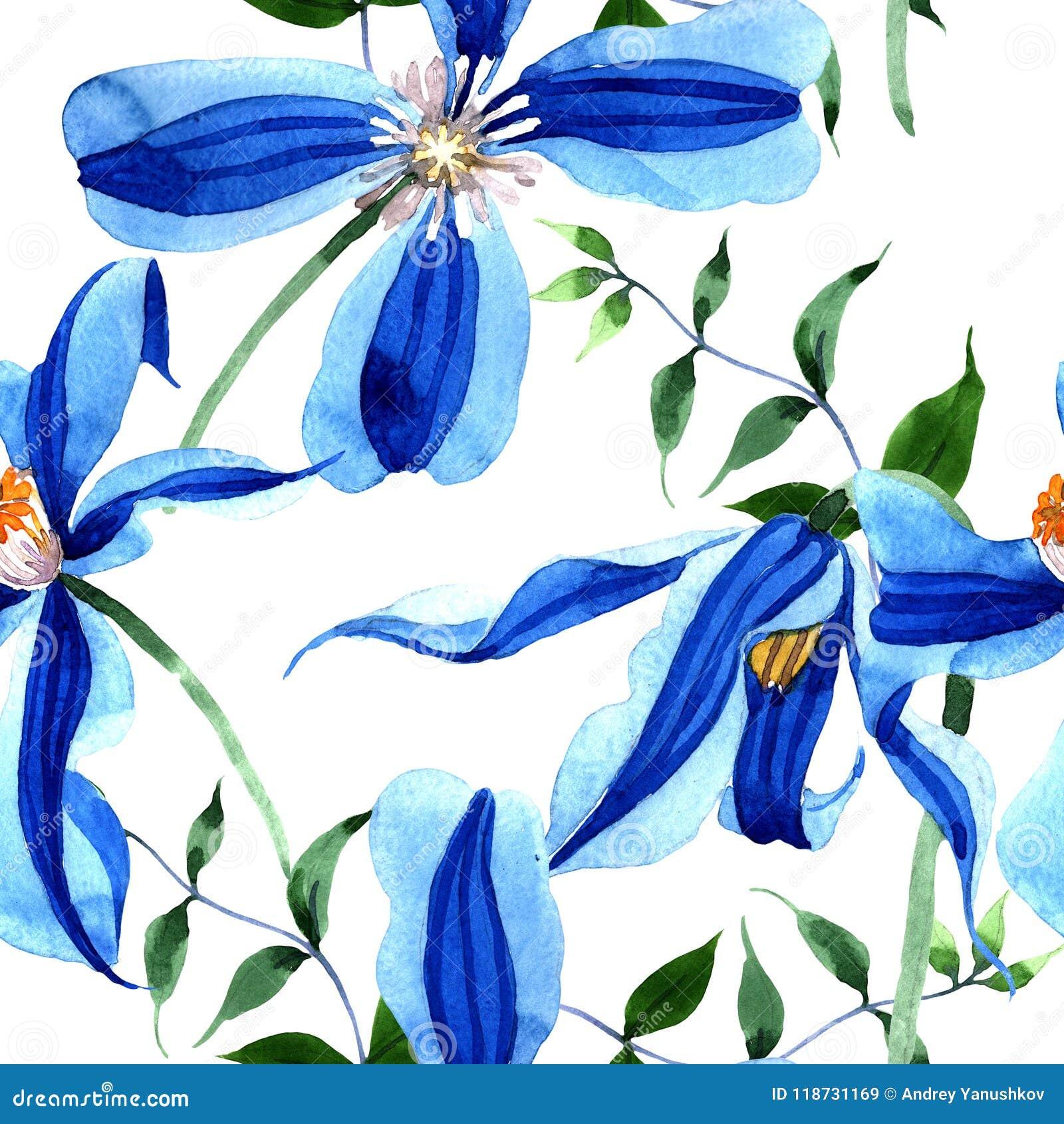 蓝色durandii铁线莲属 花卉植物的花 无缝的背景模式 织品墙纸印刷品纹理