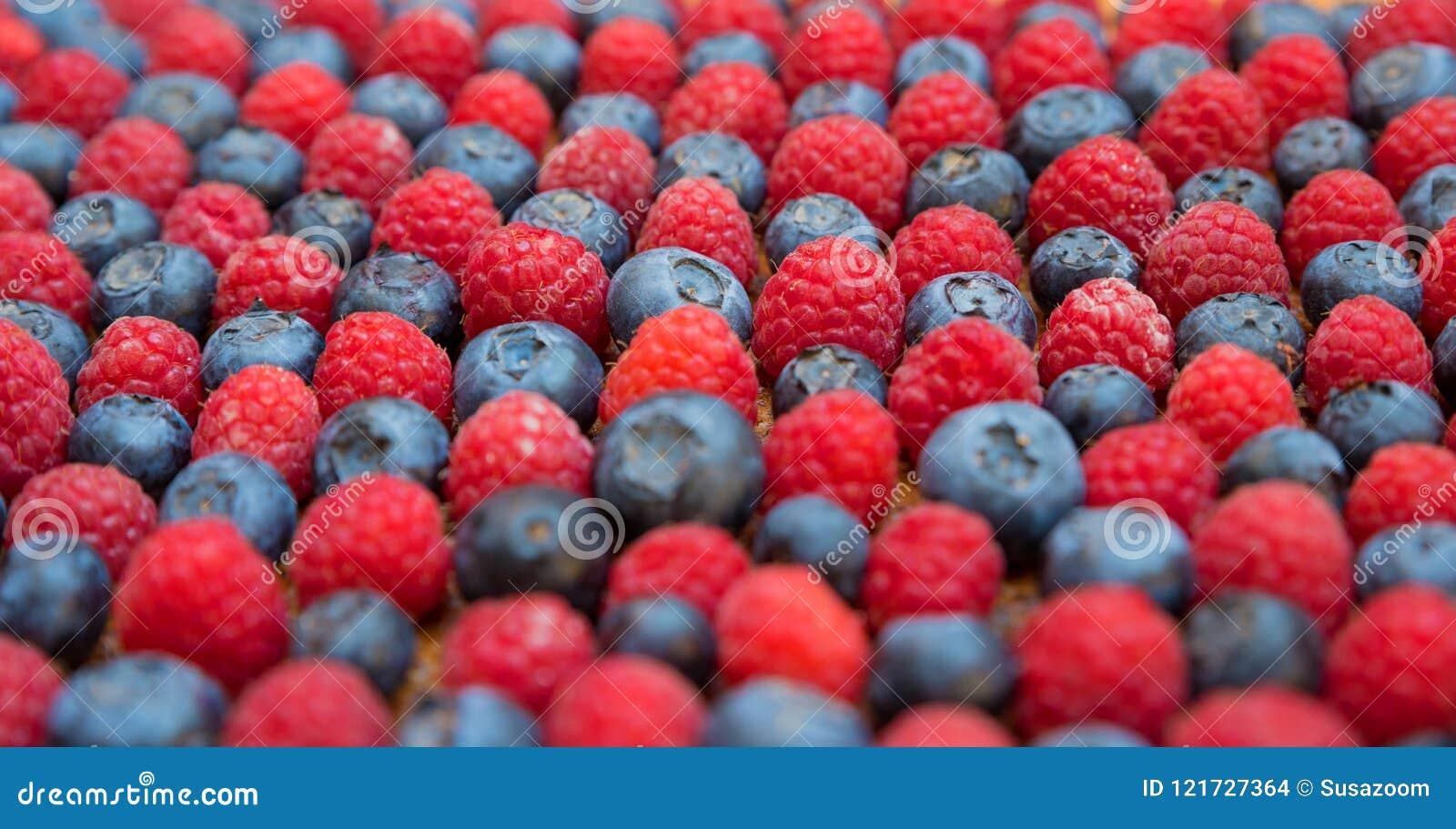 蓝莓和莓侧视图