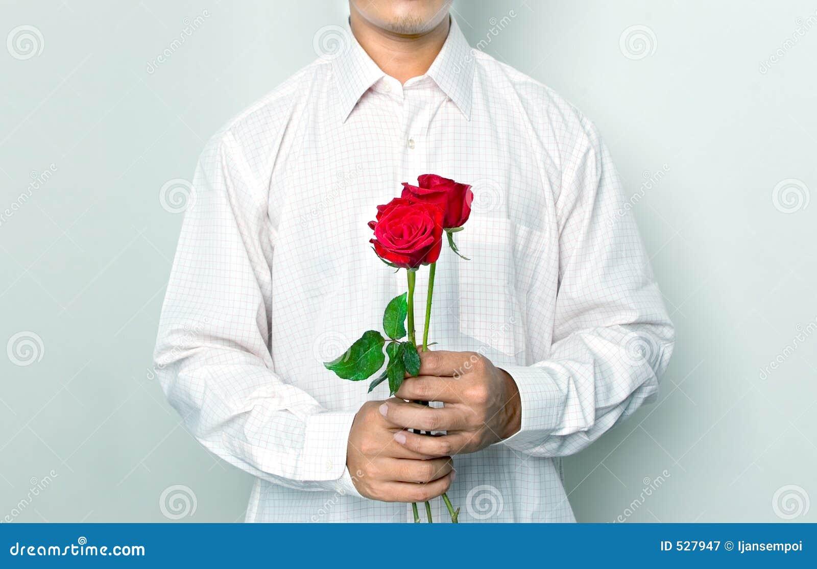 Download 藏品人玫瑰 库存图片. 图片 包括有 绿色, 背包, 现有量, 上升了, 浪漫, 婚姻, 锋利, 感觉, 特殊 - 527947