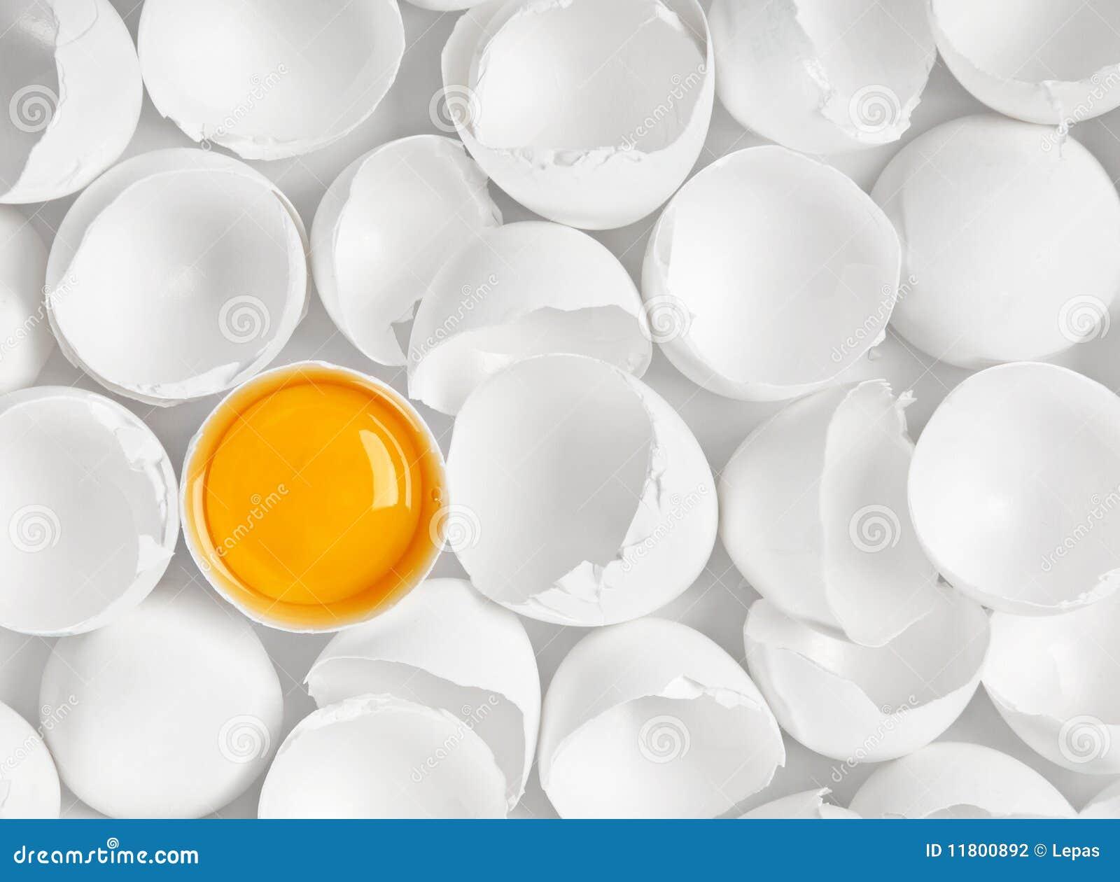 蛋一空白卵黄质