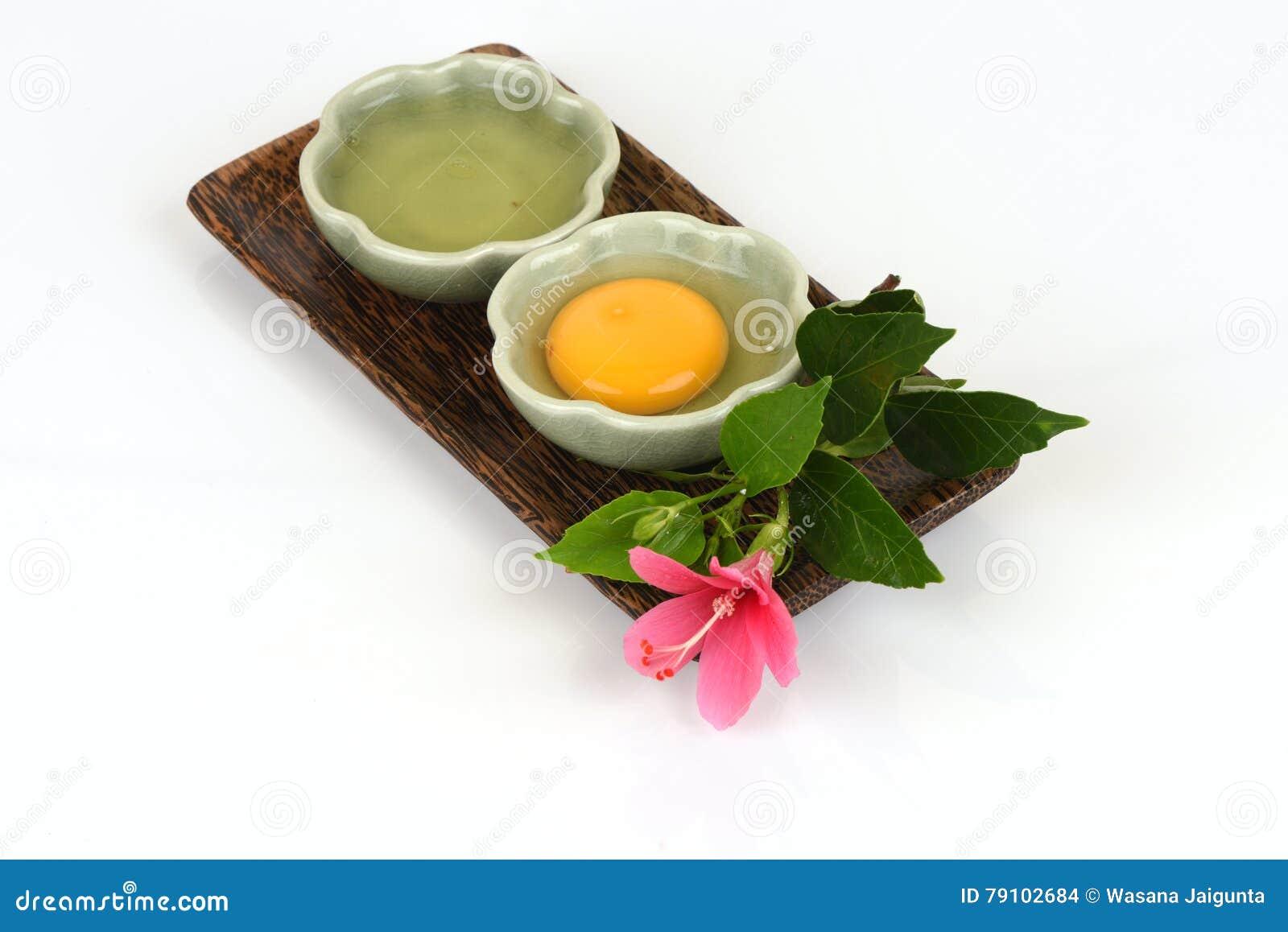 蛋白和卵黄质