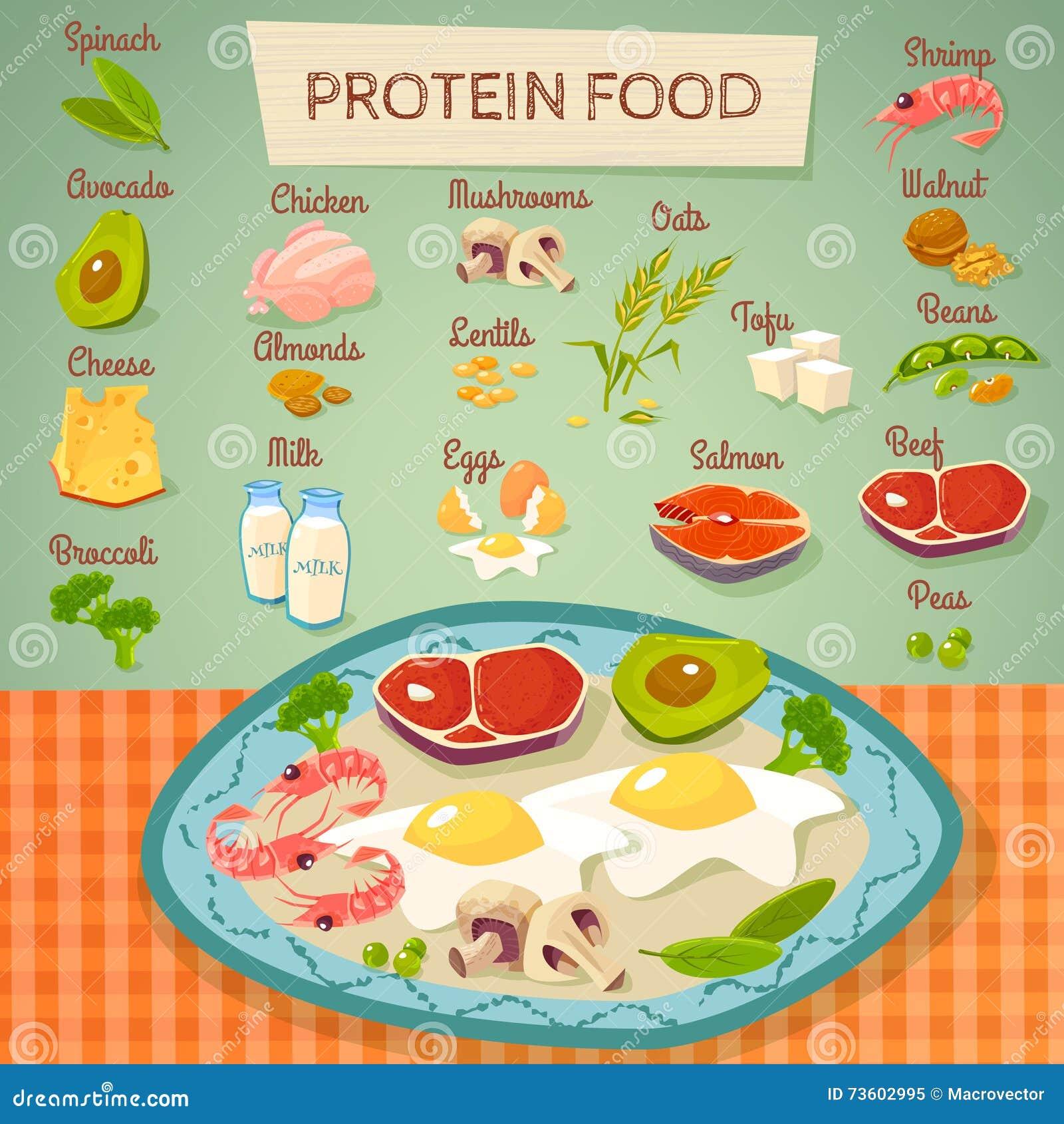 蛋白质食物未加工和煮熟的收藏