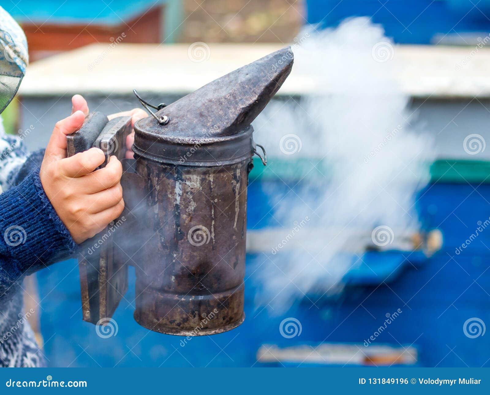蜂农在他的手上拿着一个烟囱bees_的熏蒸的