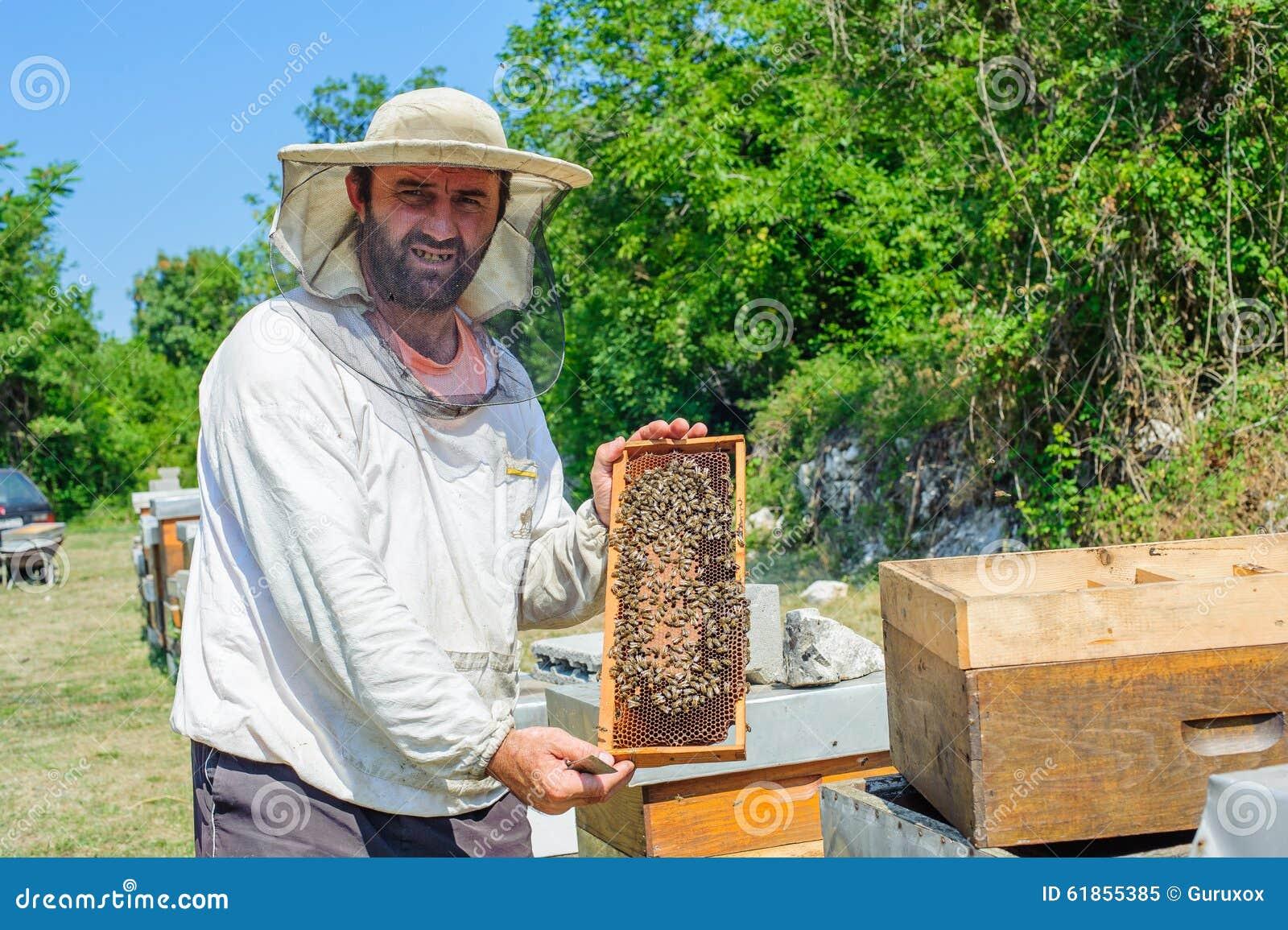 拉扯从蜂房的蜂农蜥蜴.塞尔达框架神兽门图片