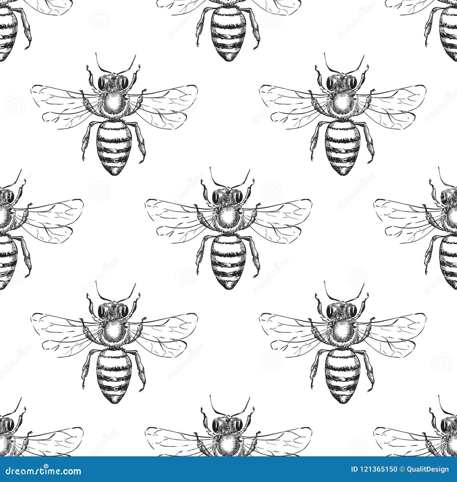 蜂无缝的传染媒介样式 蜜蜂的剪影例证 时尚纺织品印刷品或蜂蜜包装的背景设计