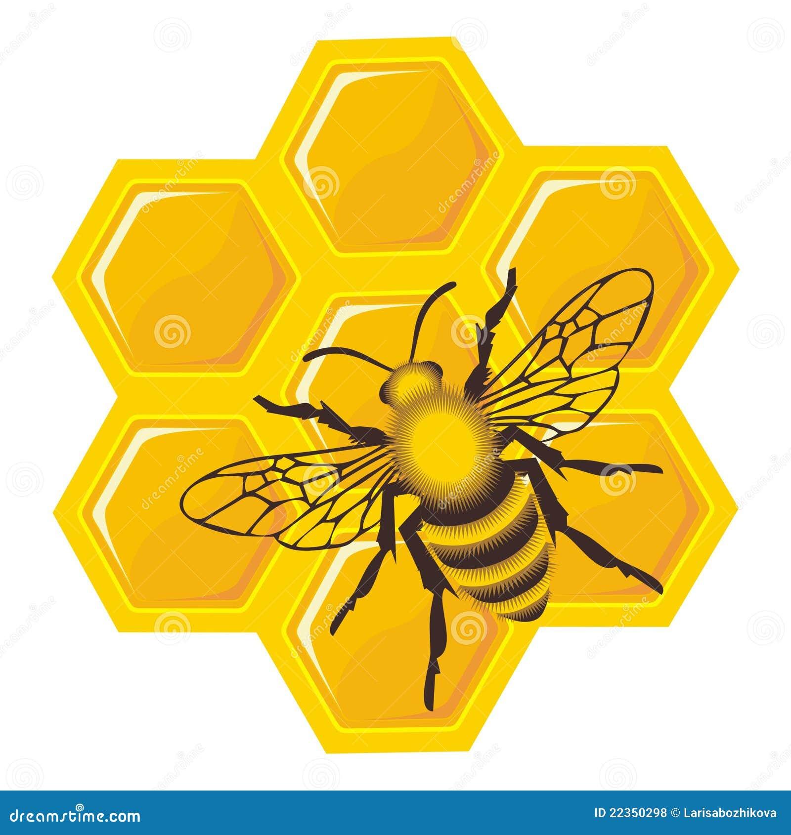 蜂电池蜂蜜