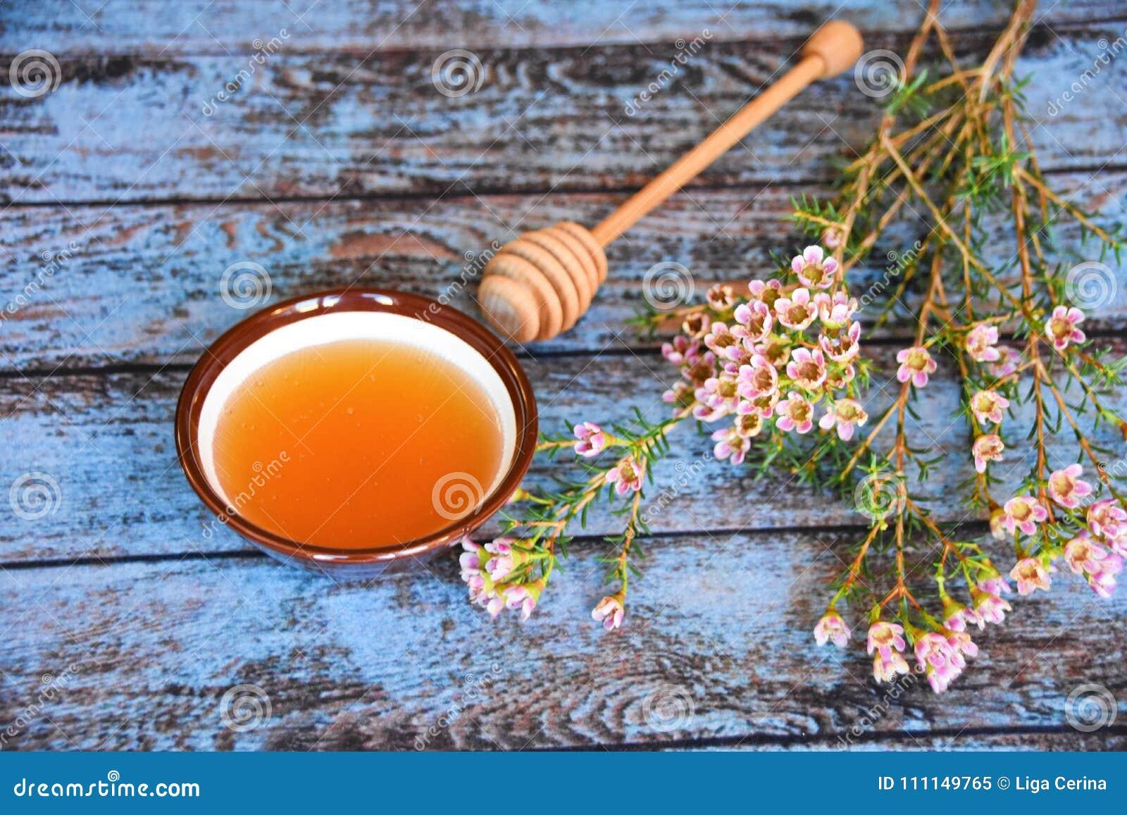 蜂蜜浸染工和manuka树