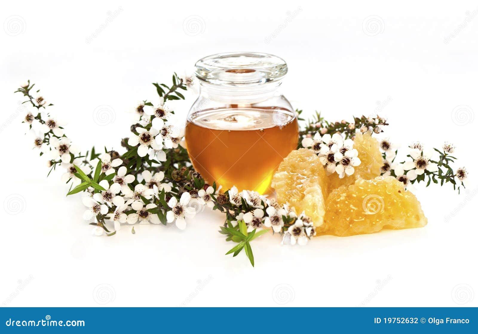 蜂蜜manuka