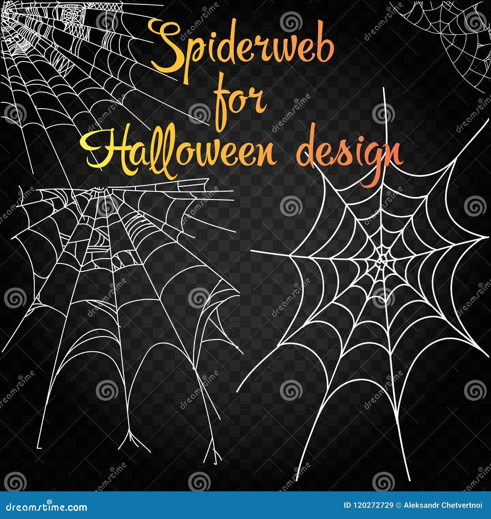 蜘蛛网的收藏,隔绝在黑,透明背景 万圣夜设计的Spiderweb 蜘蛛网元素,鬼,可怕