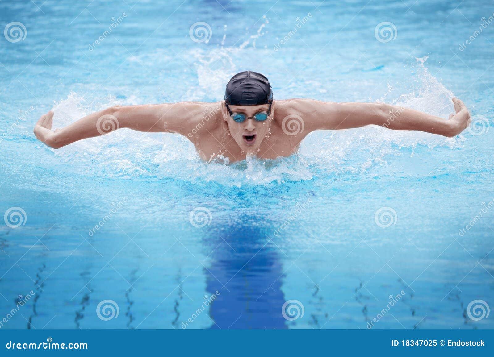 蝴蝶人执行的冲程游泳者