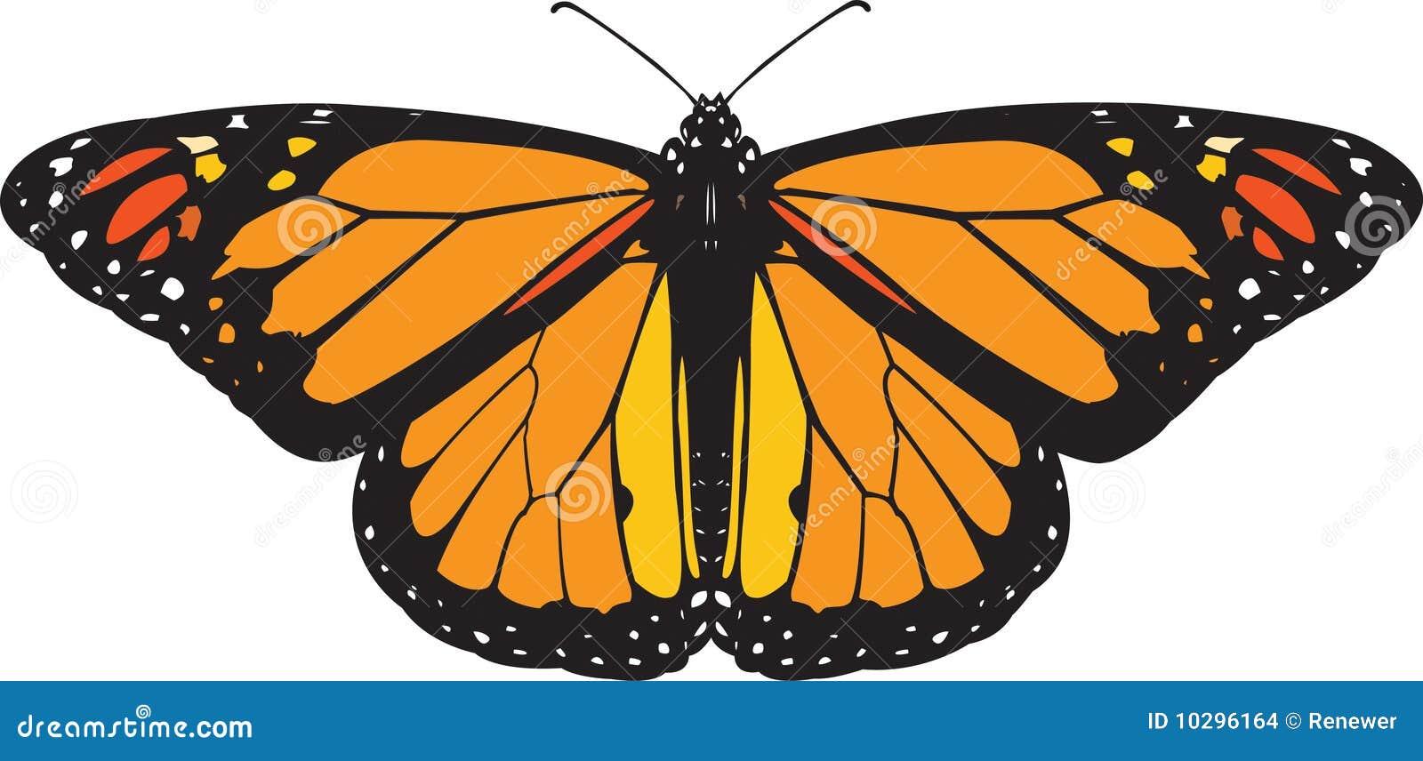 蝴蝶国君向量