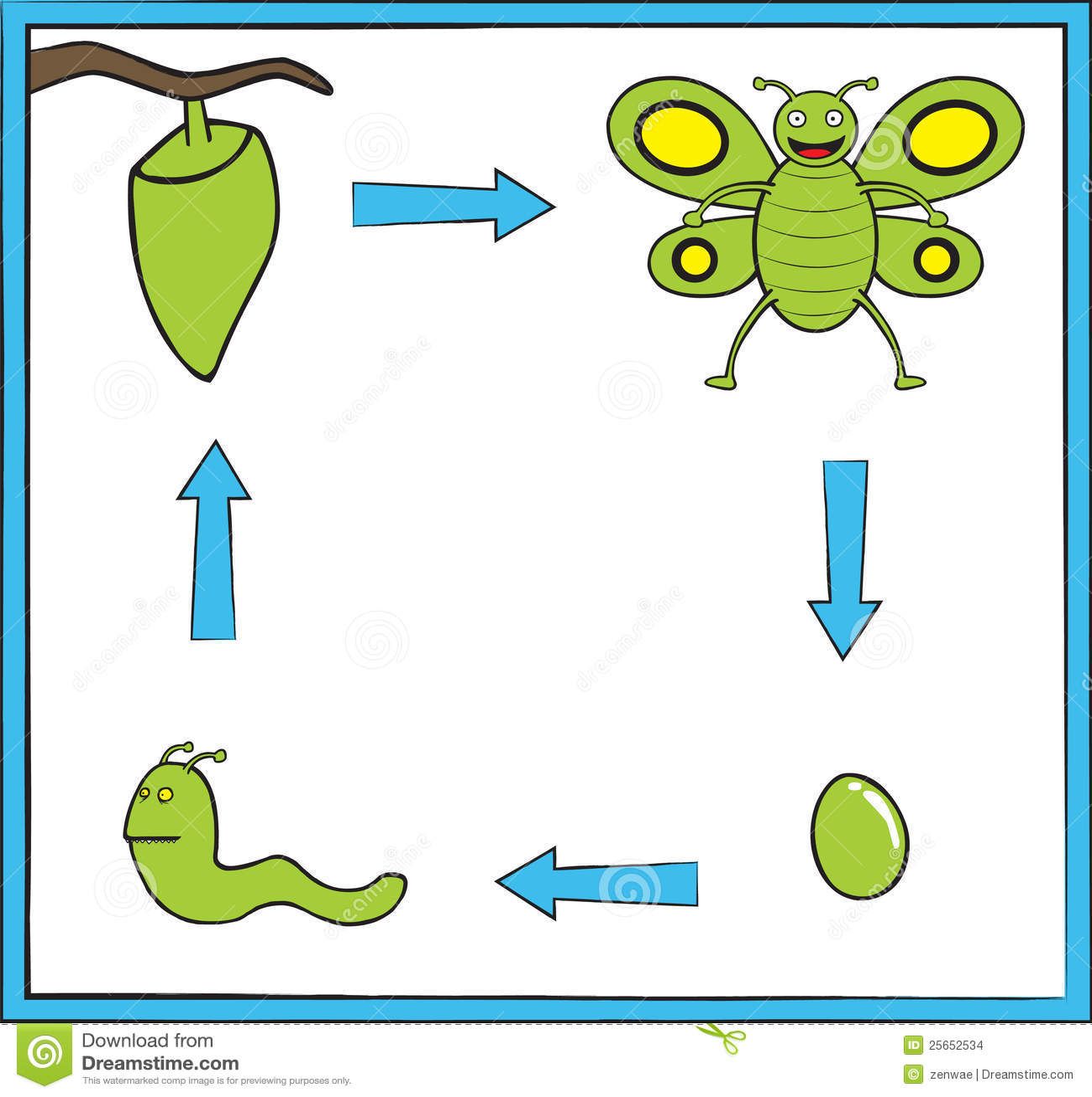 蝴蝶绿色演变