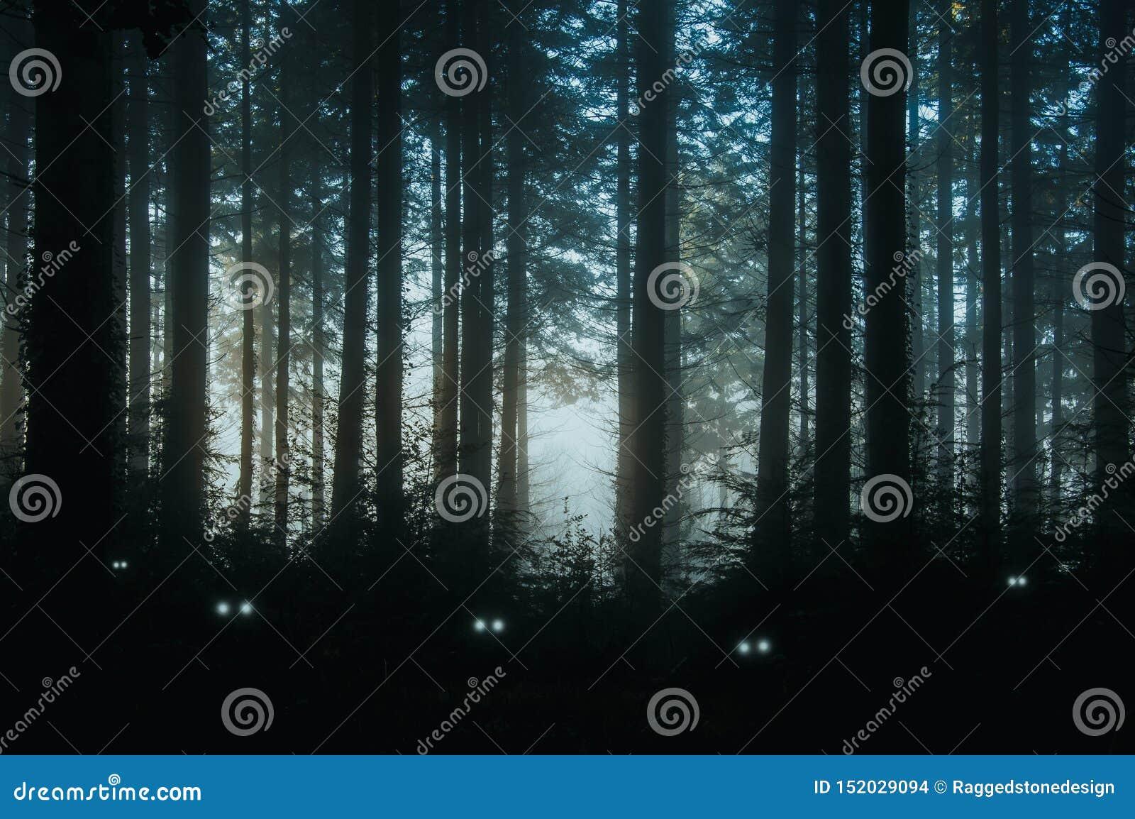 蠕动,松树幻想森林,后面点燃与生物的鬼,发光的眼睛在下木的