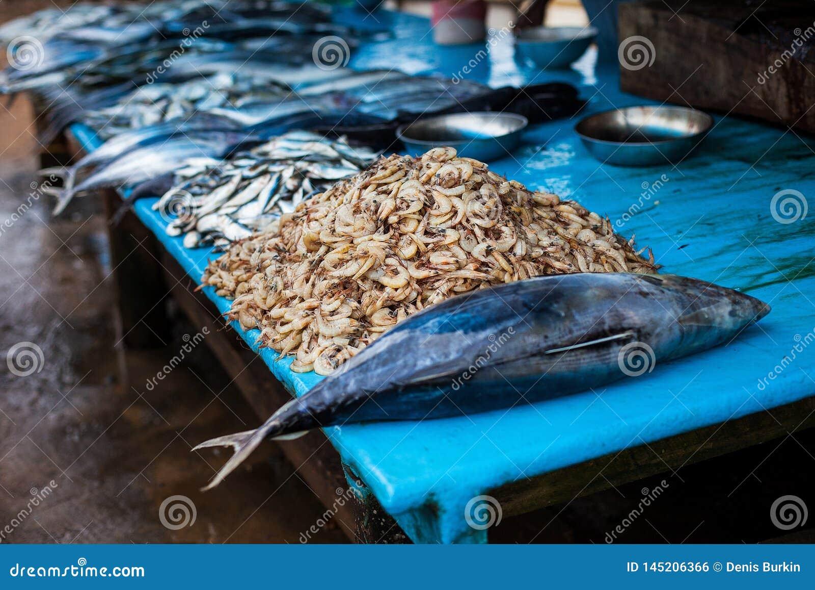 海鲜在鱼市上 街道食物,用餐市场,海鲜在斯里兰卡 金枪鱼和虾
