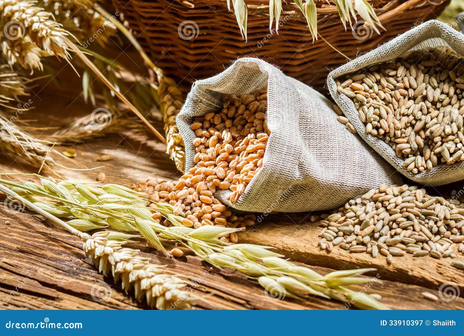 袋子特写镜头与谷粒的
