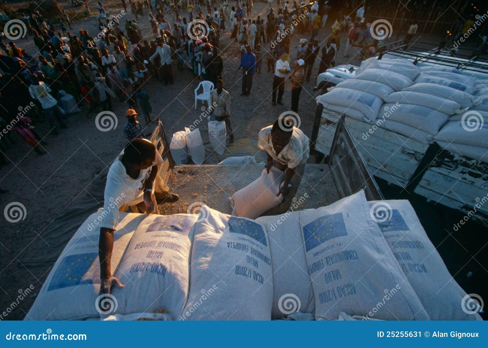 被偏移的人的替补用品在安哥拉