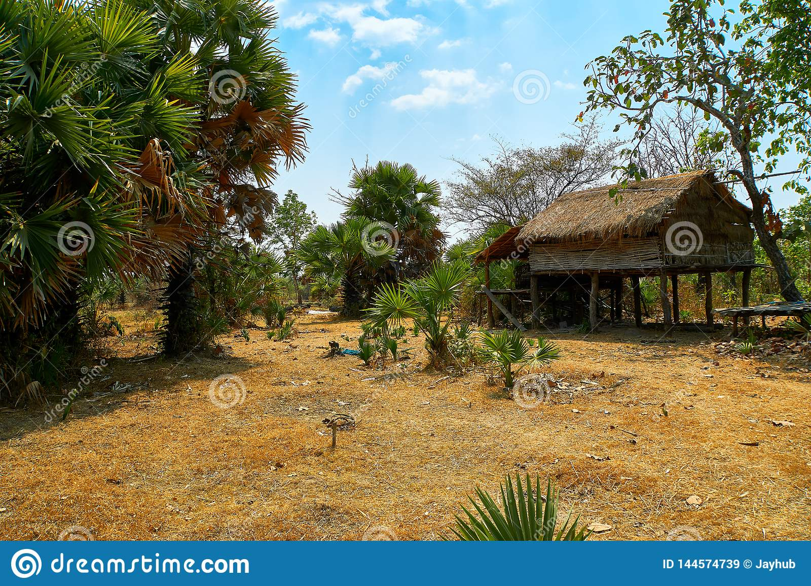 被放弃的小屋房子在桔井,柬埔寨北部的沙漠