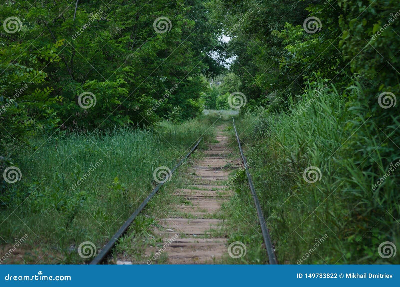 被放弃的铁路 一个曾经活泼的站点长满与草和树 ??