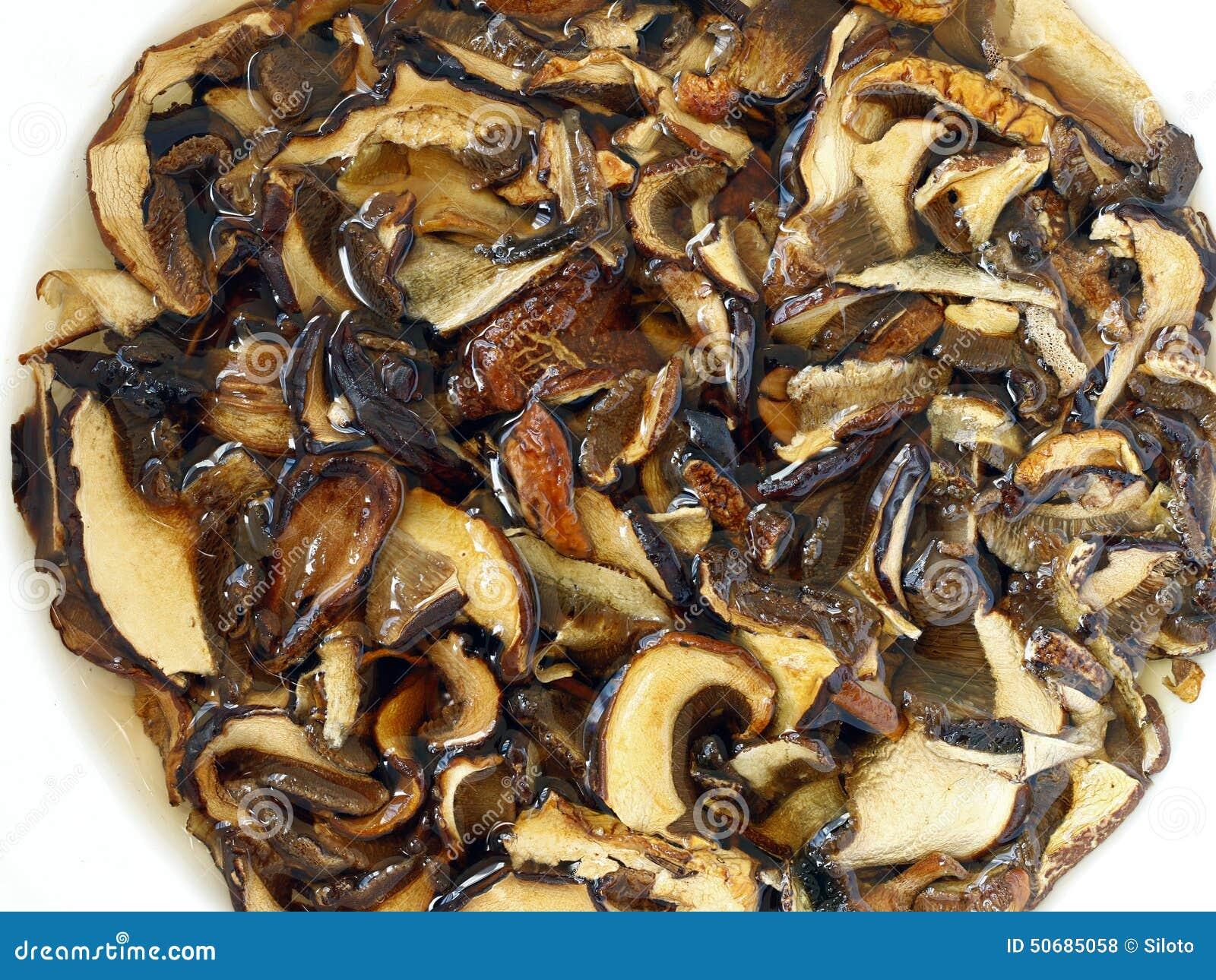 Download 被浸泡的干蘑菇 库存照片. 图片 包括有 类似, 调味料, 食谱, 食物, 成份, 烘干, 阿诺德, 厨师 - 50685058