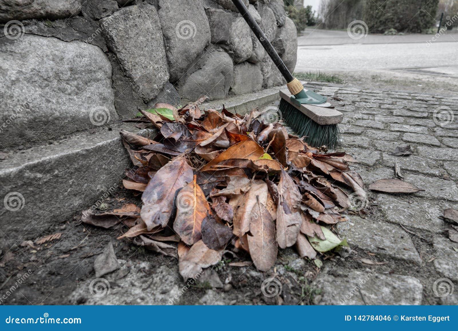 被清扫的叶子堆
