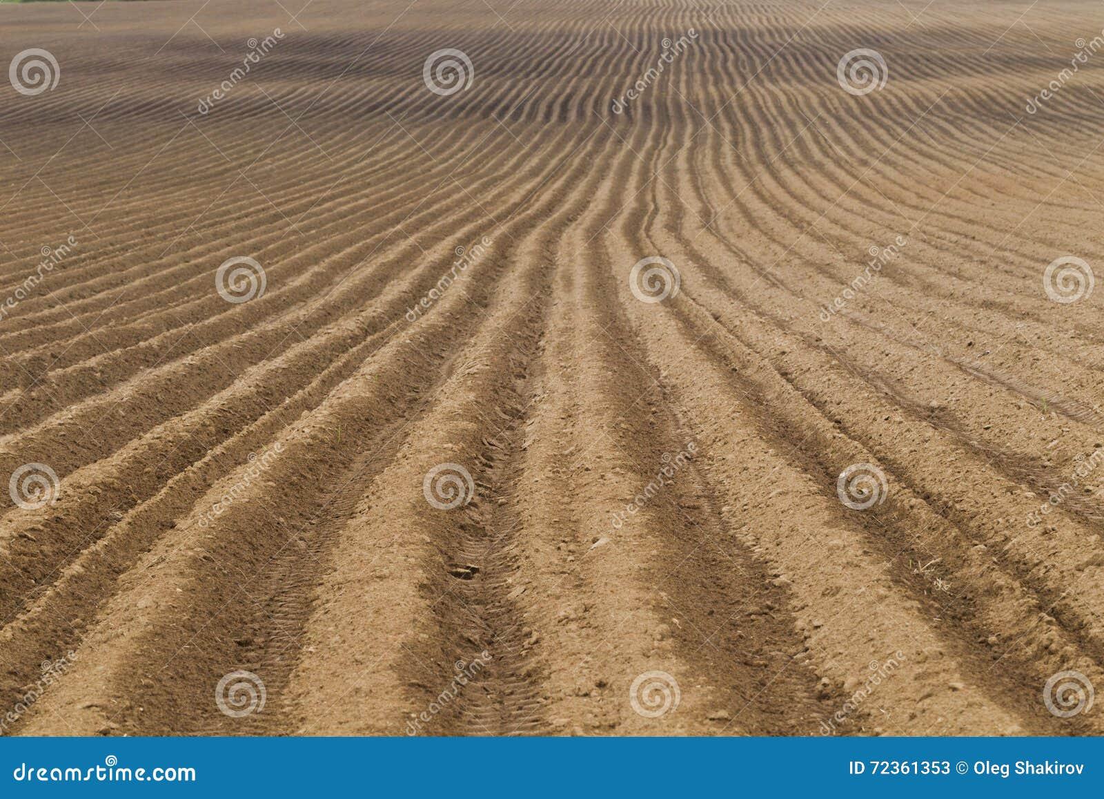被犁的农田