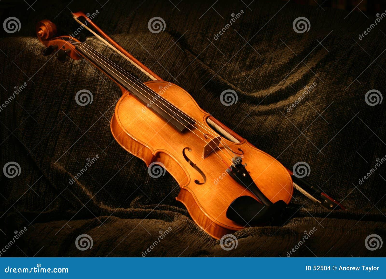 被绘的中提琴