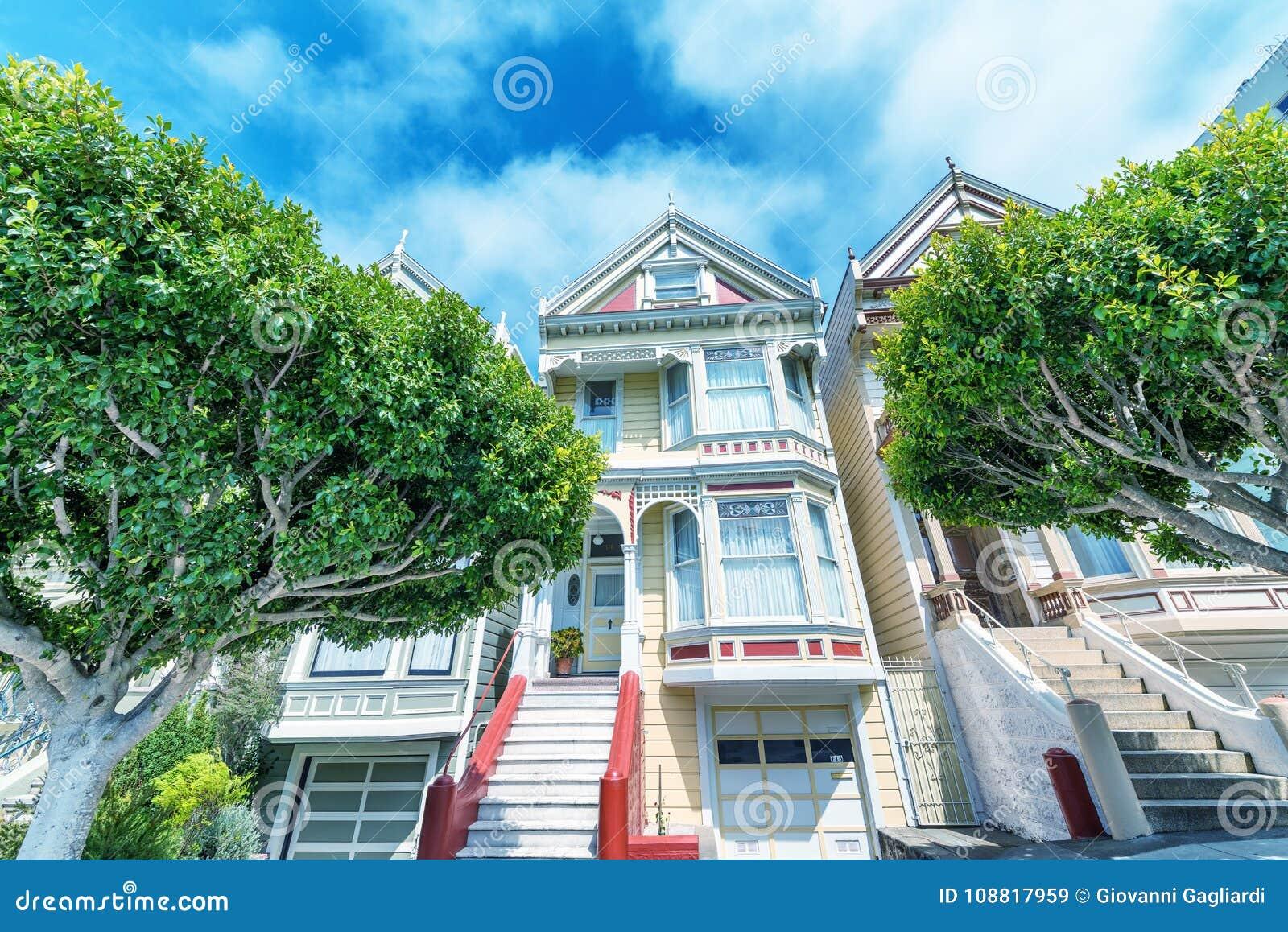 被绘的夫人在旧金山由树围拢了