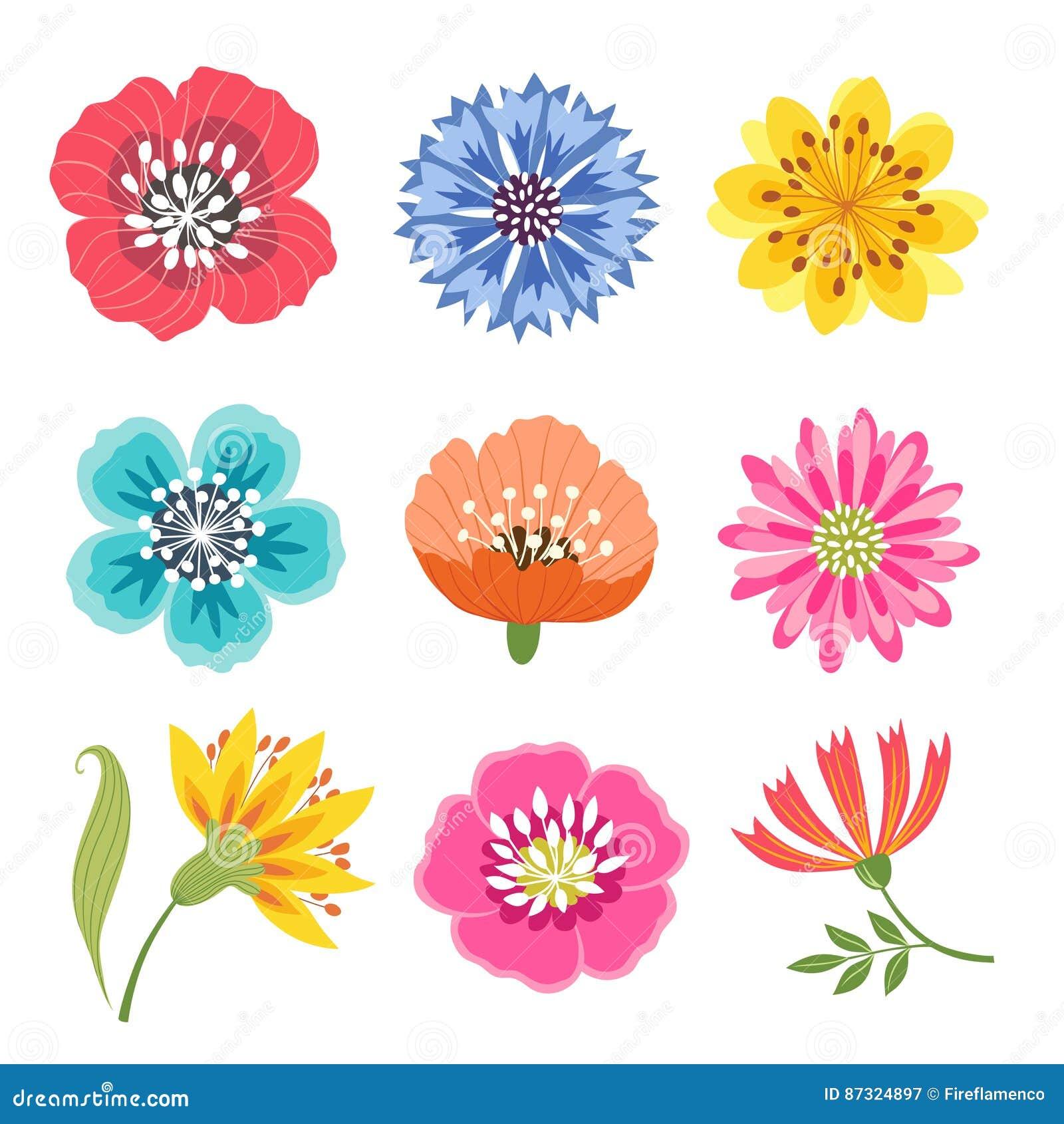 被设置的五颜六色的花