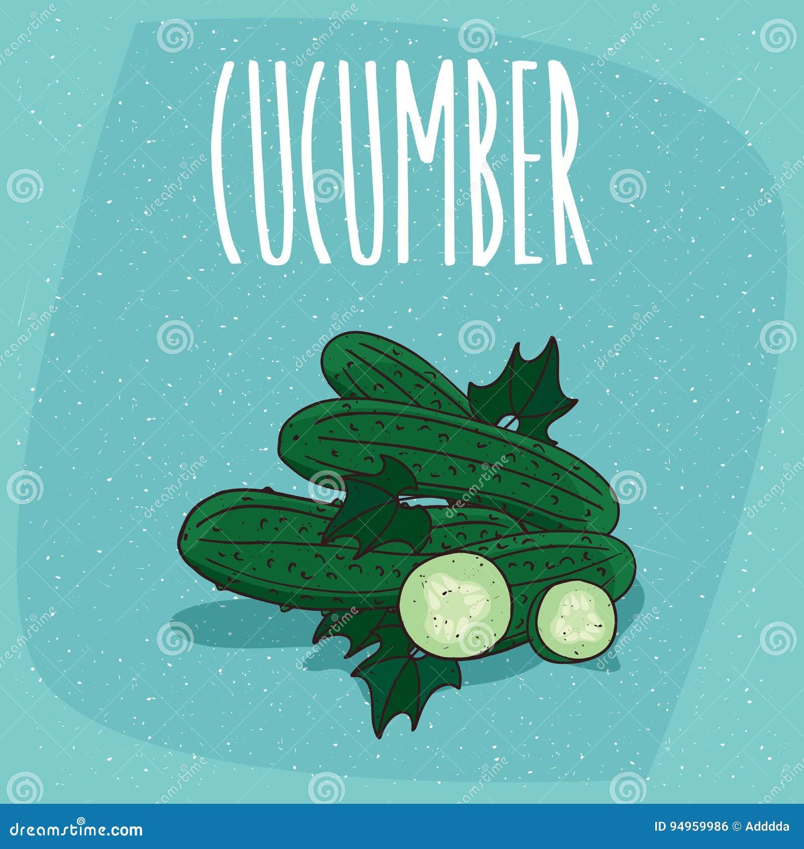 被隔绝的果子黄瓜菜整个和裁减