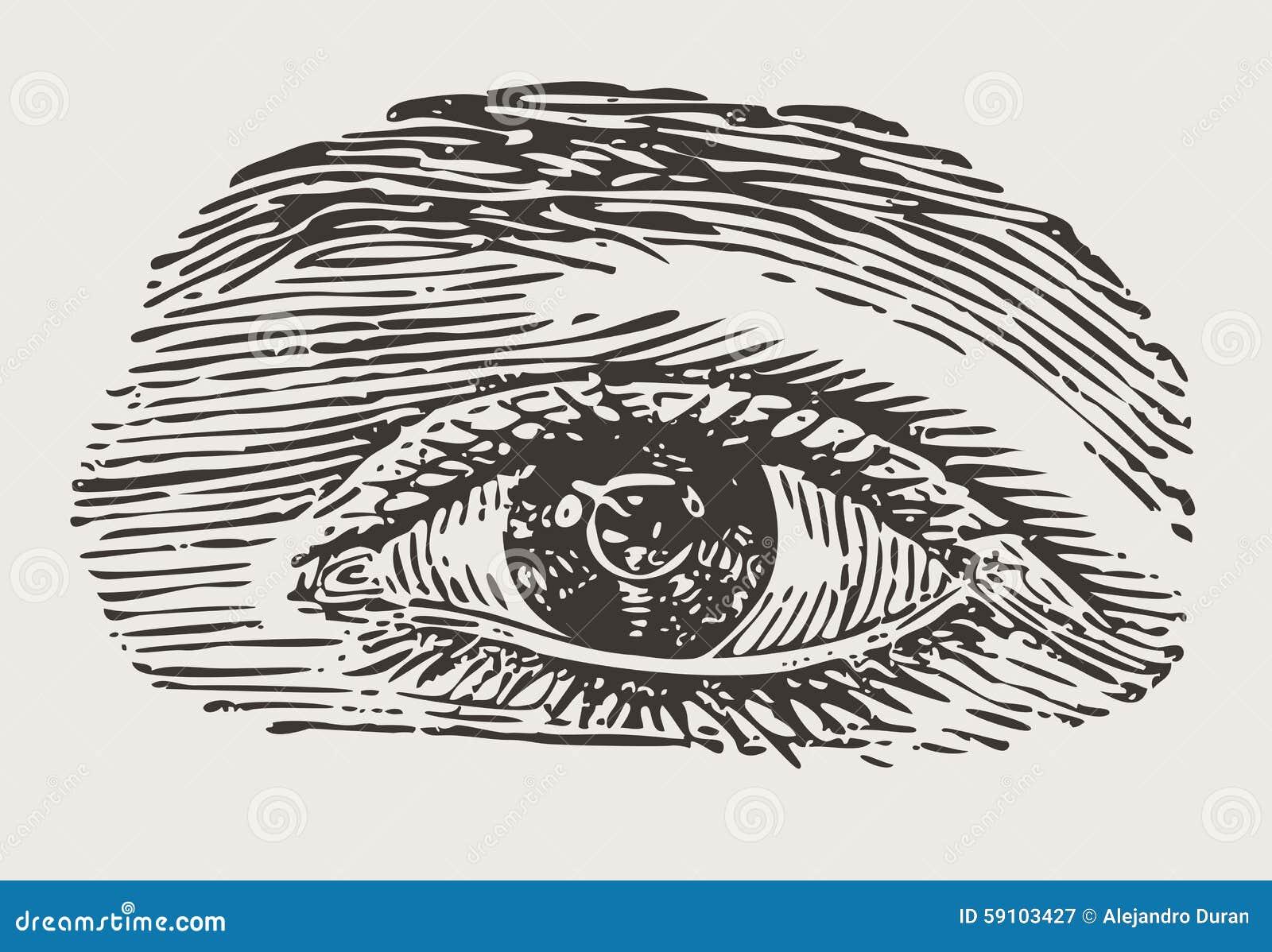 被刻记的葡萄酒眼睛