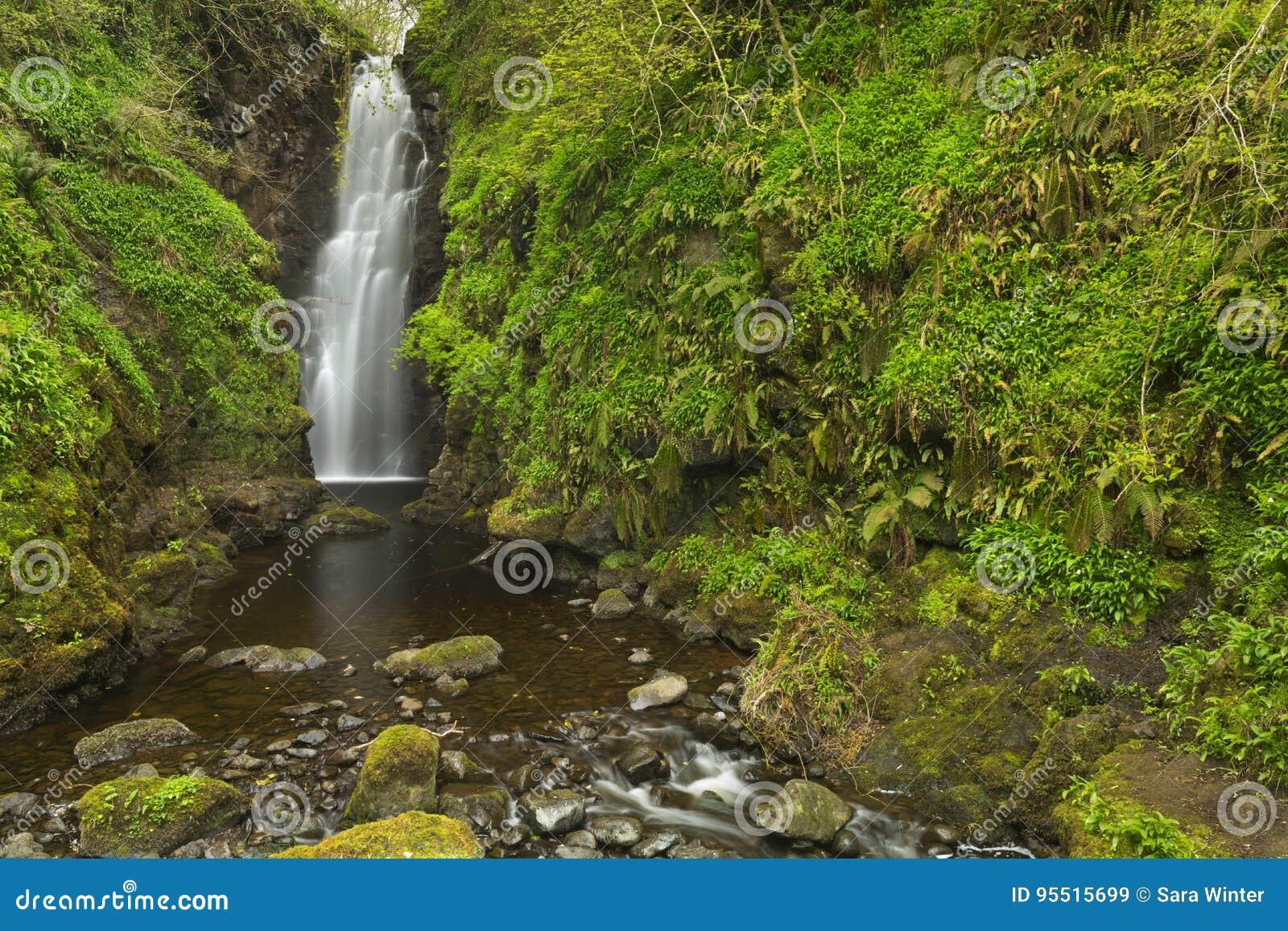 裂口在北爱尔兰落