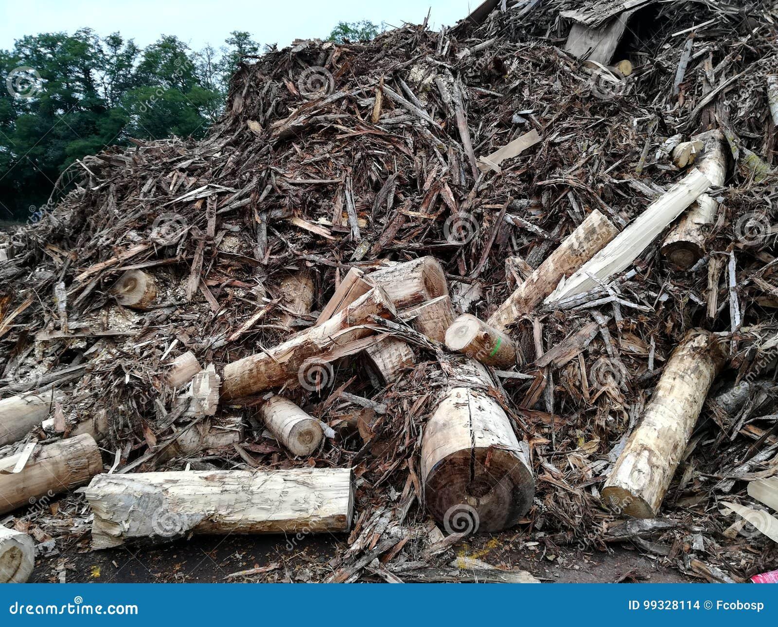 裂片的废木料