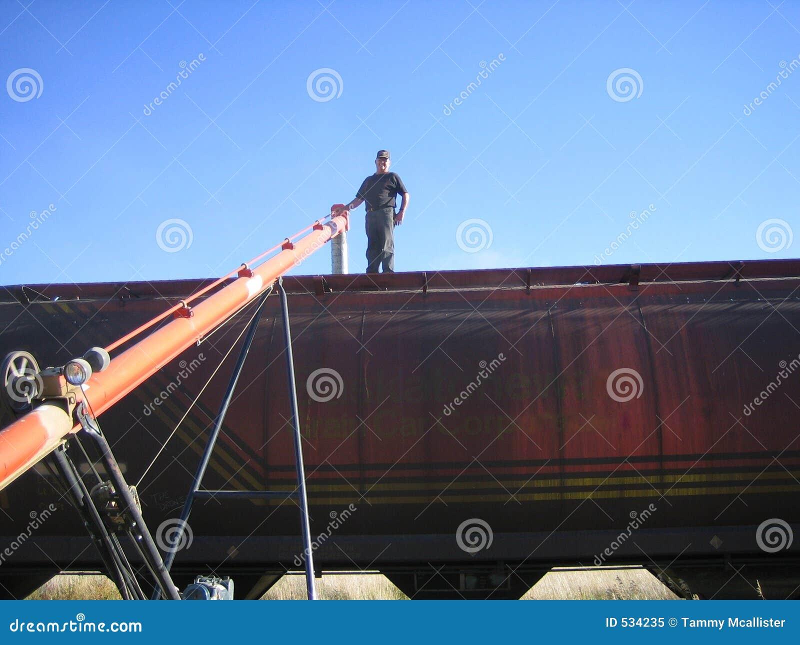 Download 装载铁路车麦子 库存图片. 图片 包括有 生产率, 食物, 加拿大, 移动, 铁路运输, 种田, 萨斯喀彻温省 - 534235