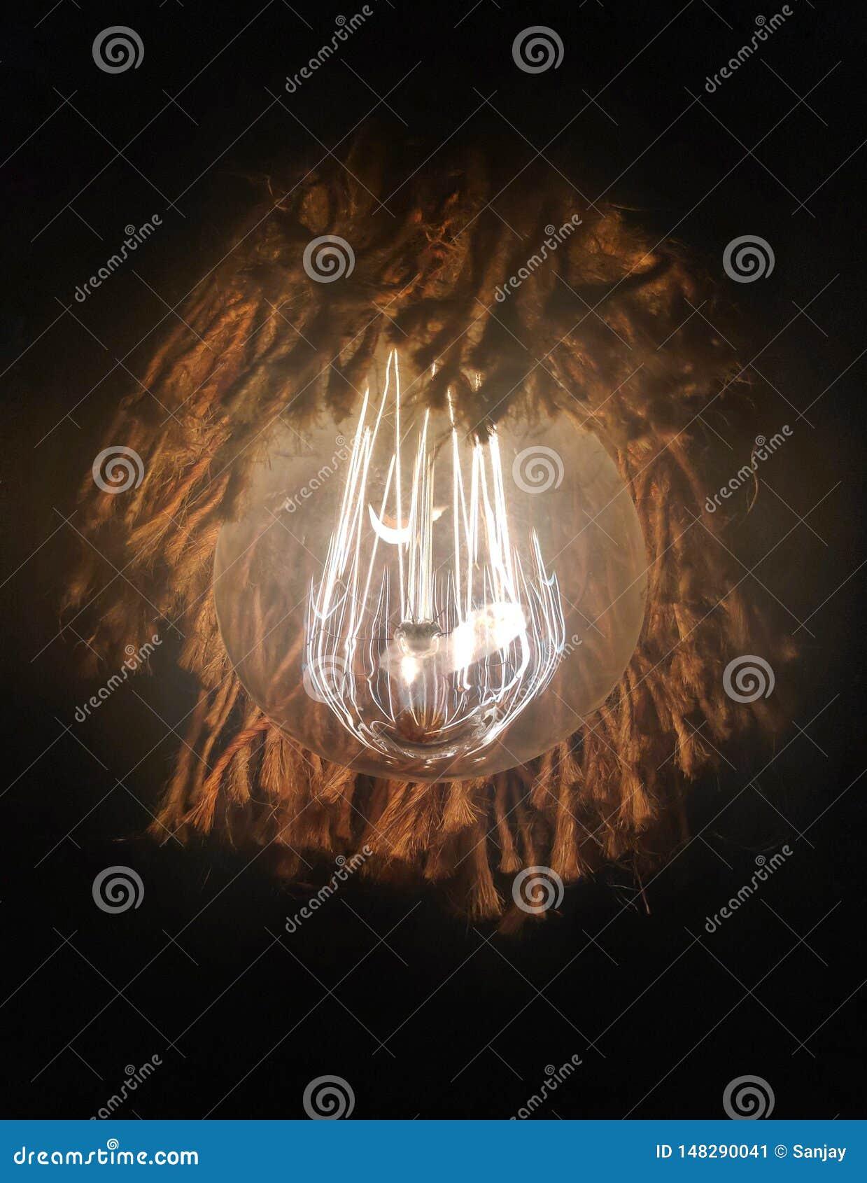 装饰电灯泡被固定在绳索里面