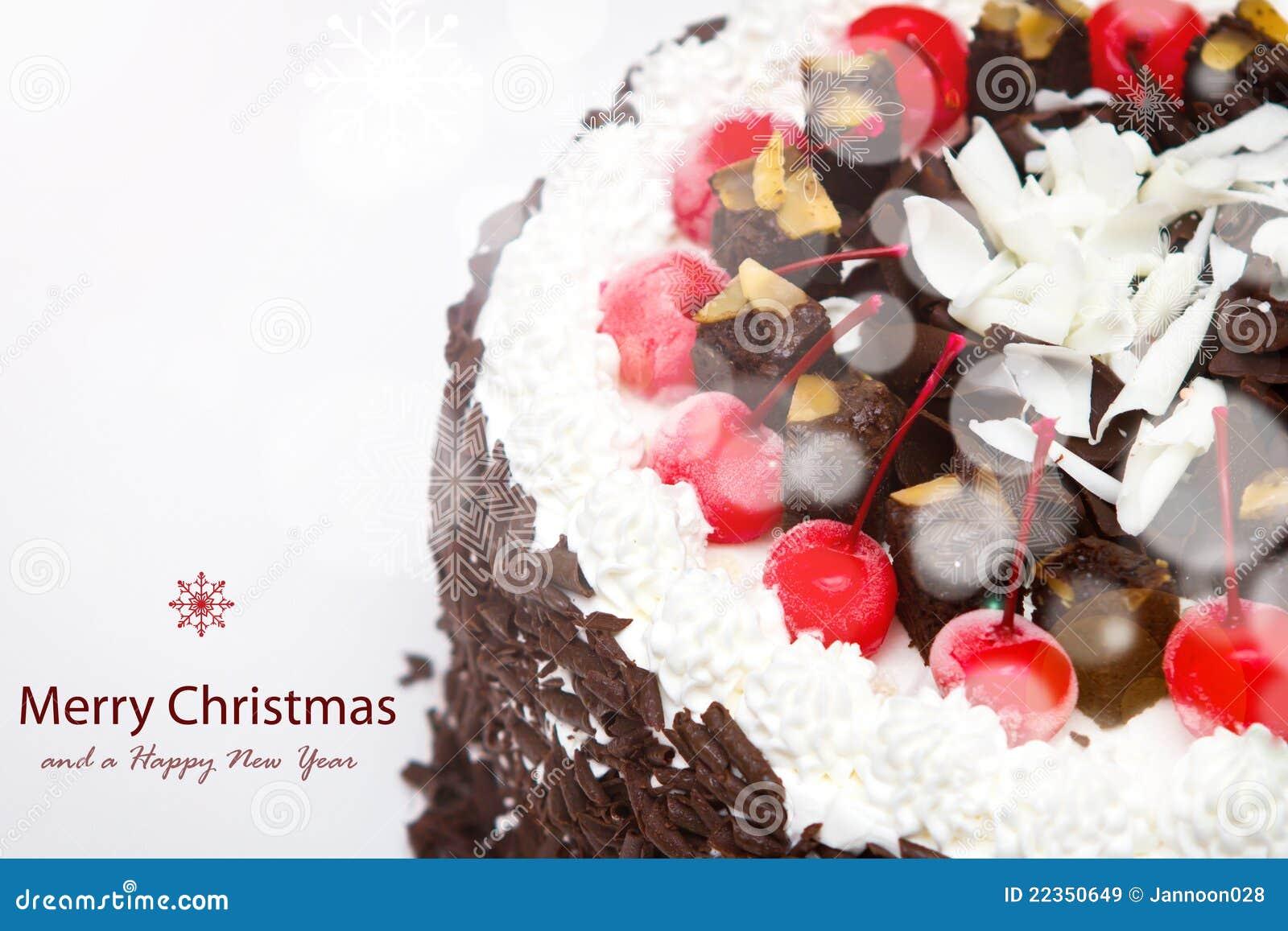 装饰的圣诞节蛋糕。