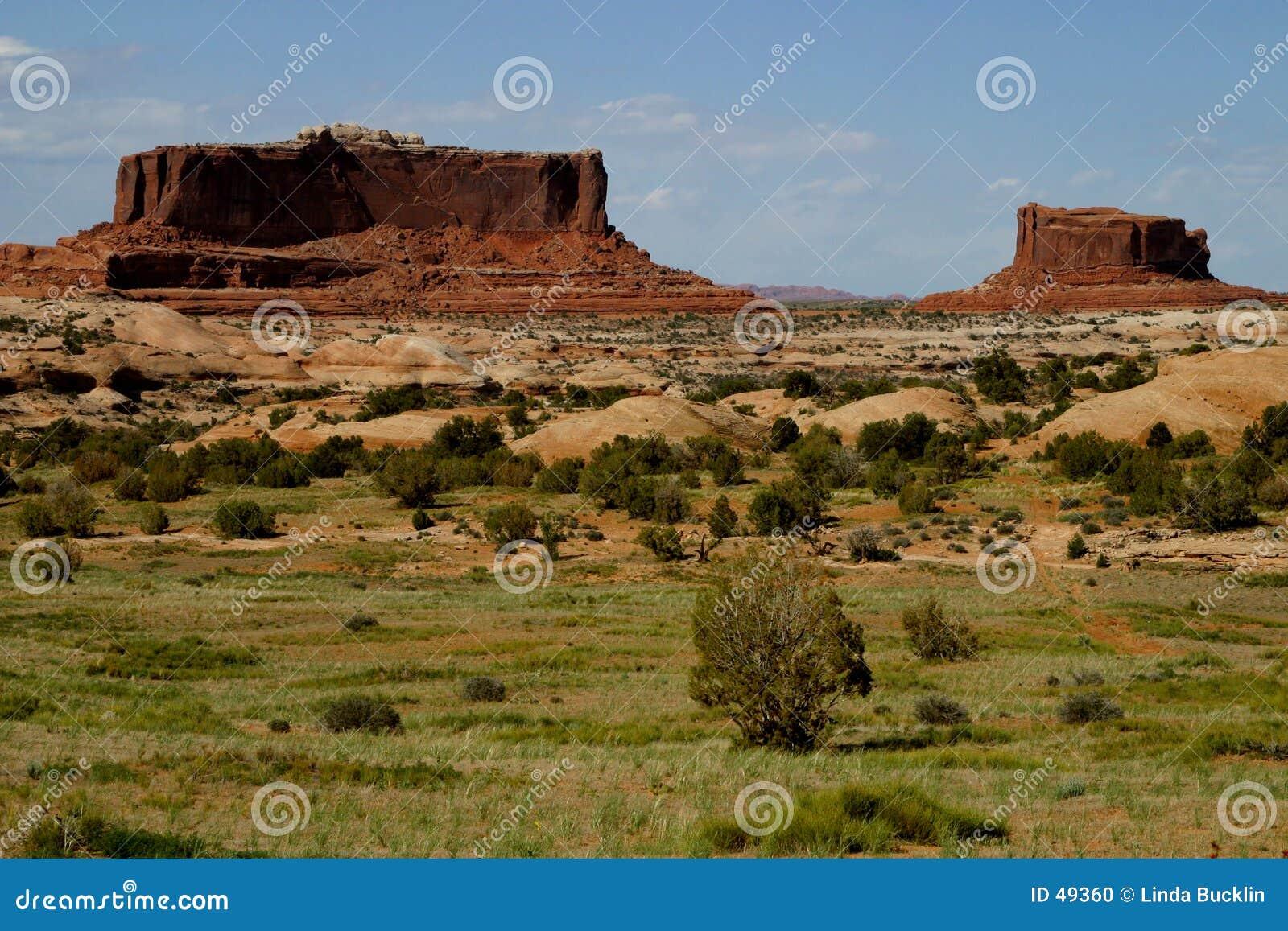 西南的mesas
