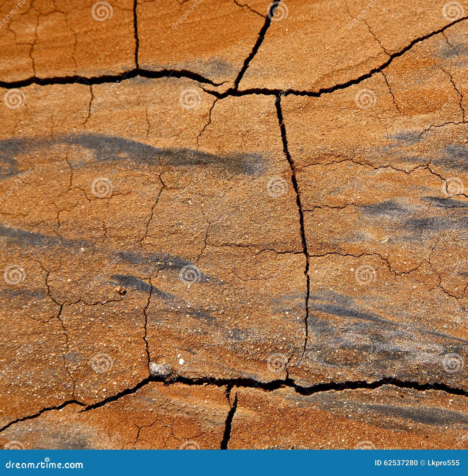 西班牙提取a纹理打破了干燥沙子和地衣