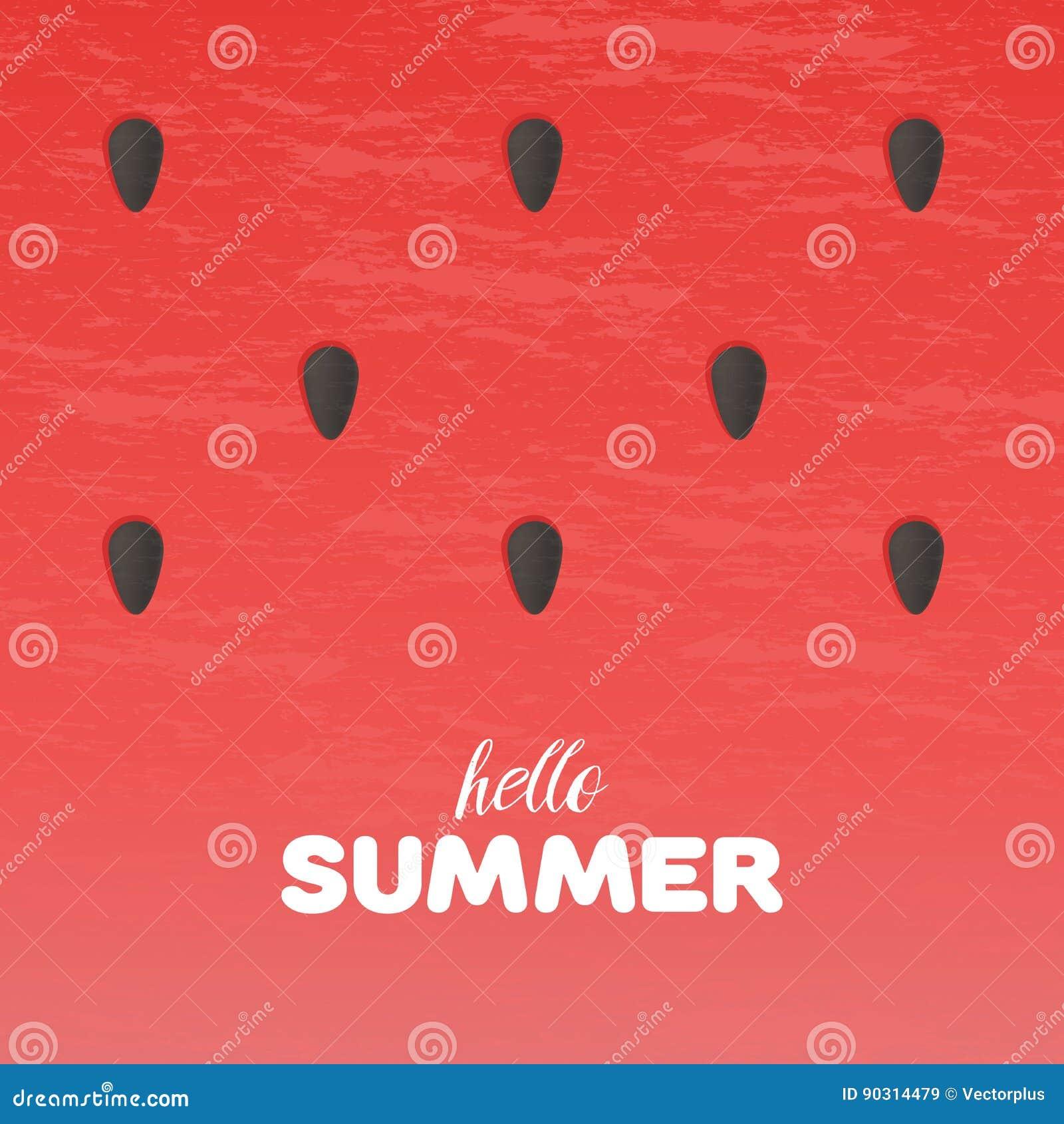 西瓜纹理背景与你好夏天在传染媒介例证上写字