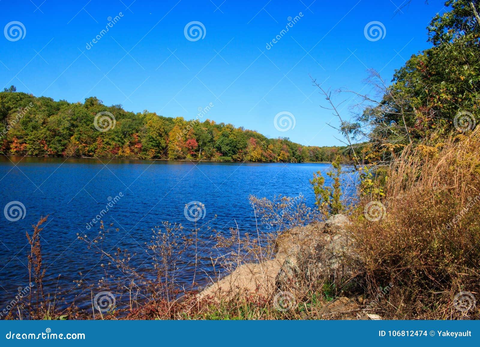 西部哈特福德水库岸的秋天植物