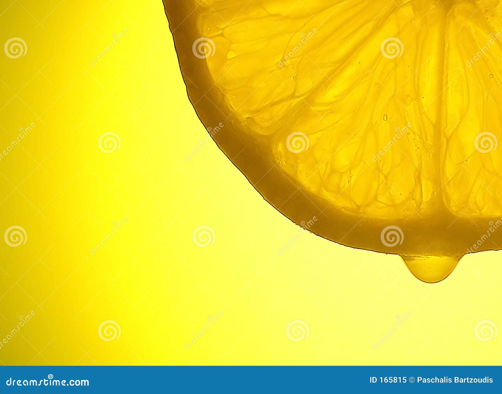 解剖学柠檬