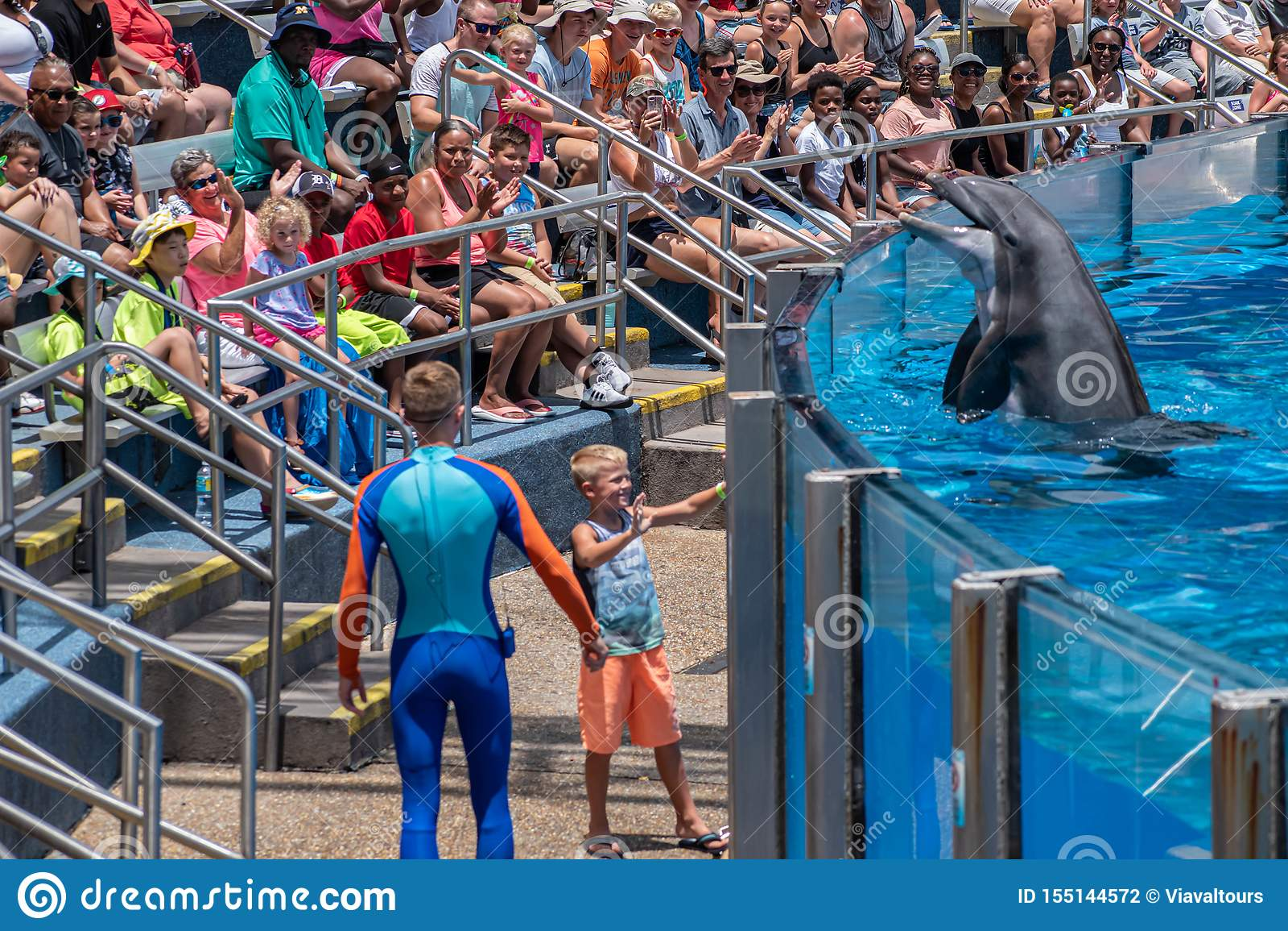 讨人喜欢dolphing的使用与教练员和小孩在海豚天在Seaworld 4显示